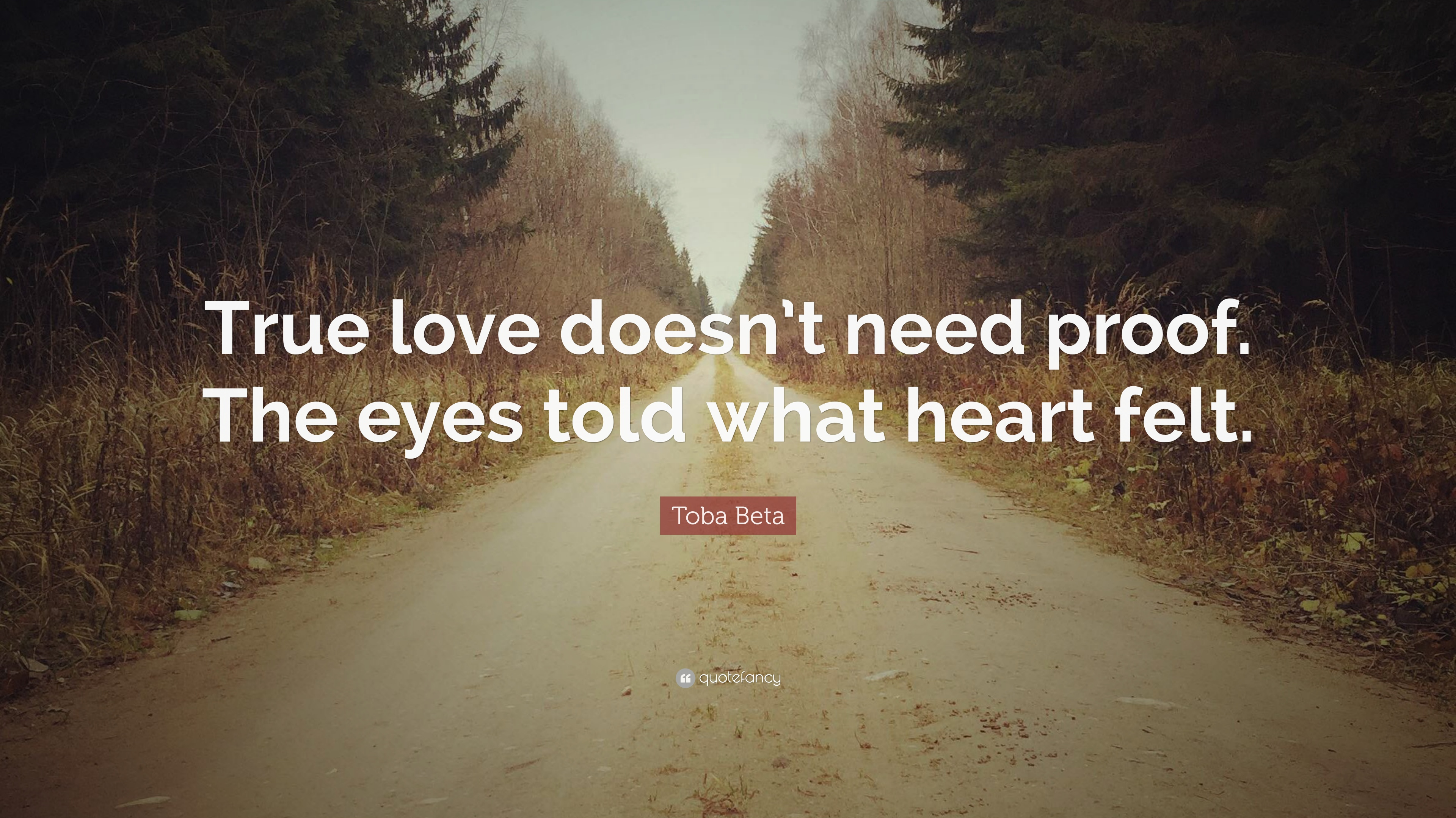 Toba Beta Quote: U201cTrue Love Doesnu0027t Need Proof. The Eyes Told