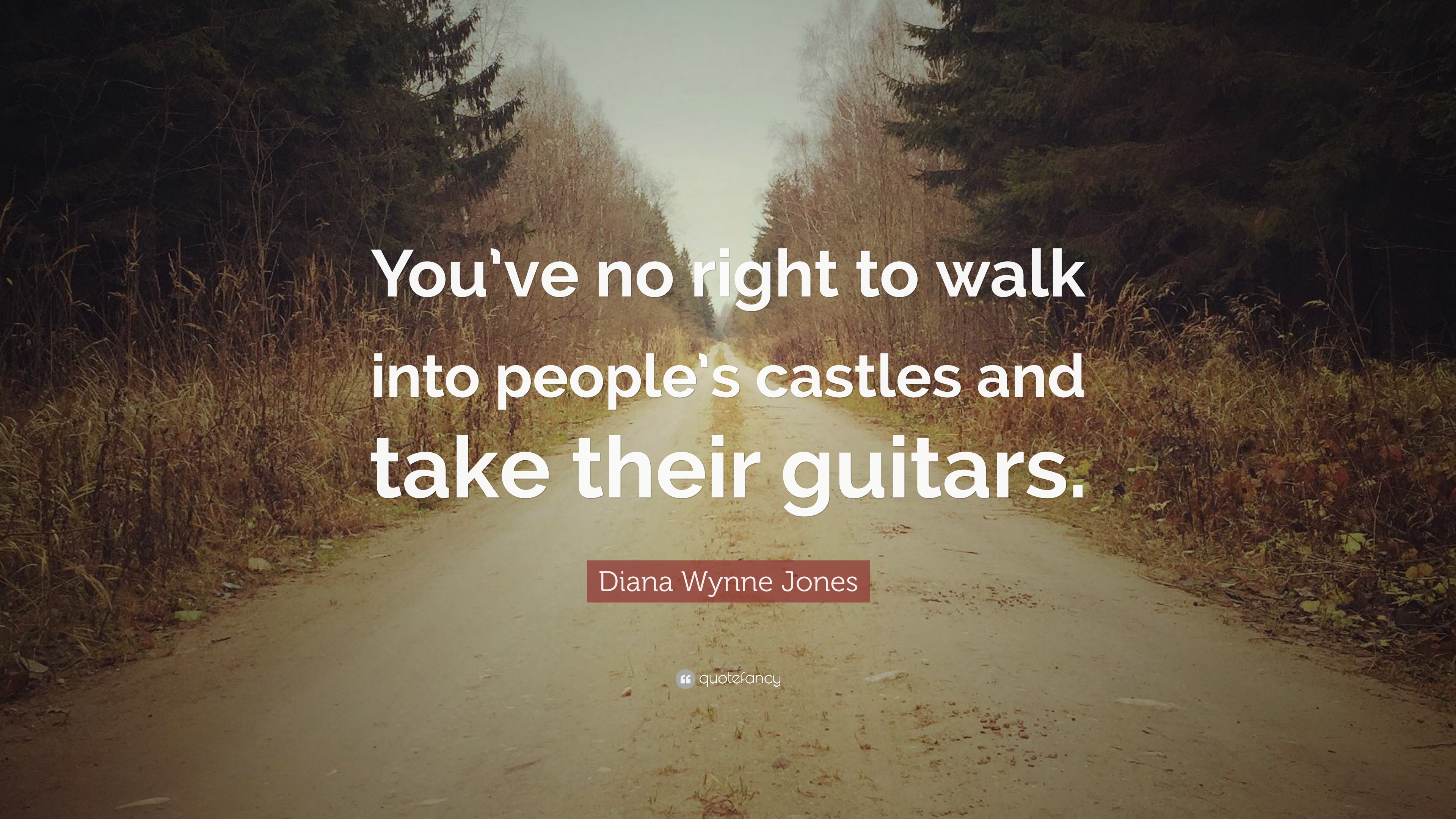 "Diana Wynne Jones Quotes: Diana Wynne Jones Quote: ""You've No Right To Walk Into"