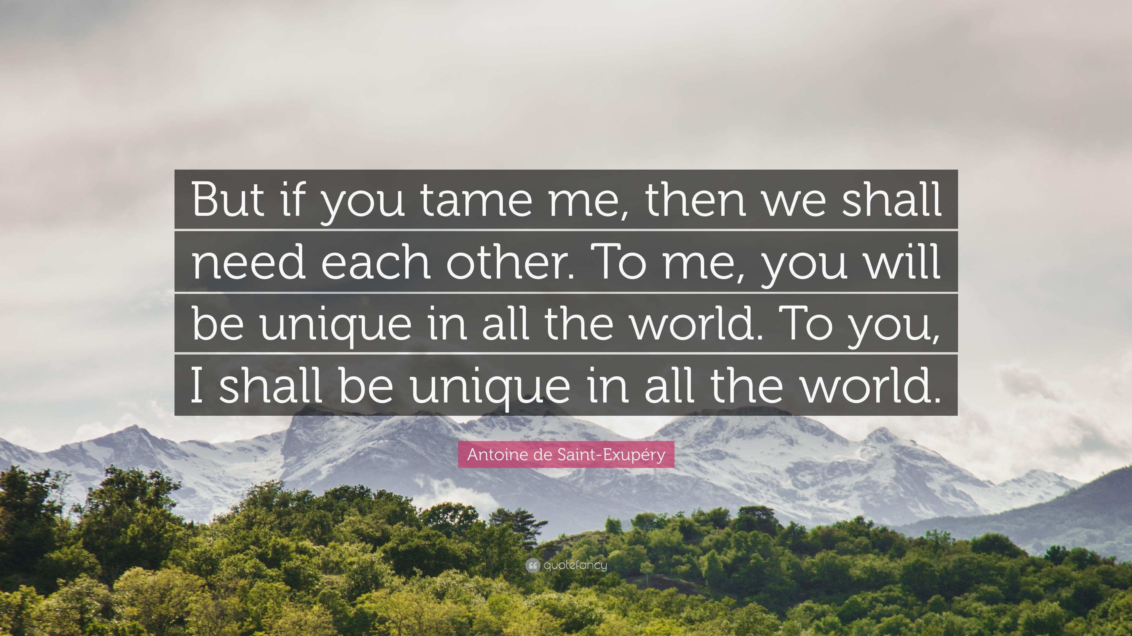 if you tame me