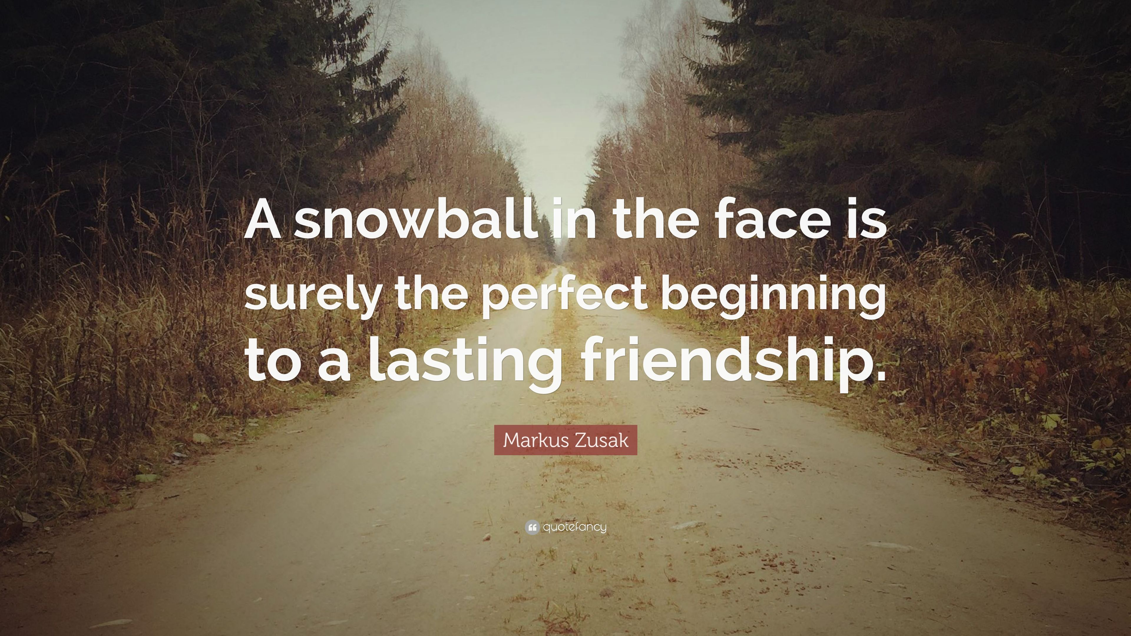 """Quotes About Lasting Friendship Markus Zusak Quote """"A Snowball In The Face Is Surely The Perfect"""