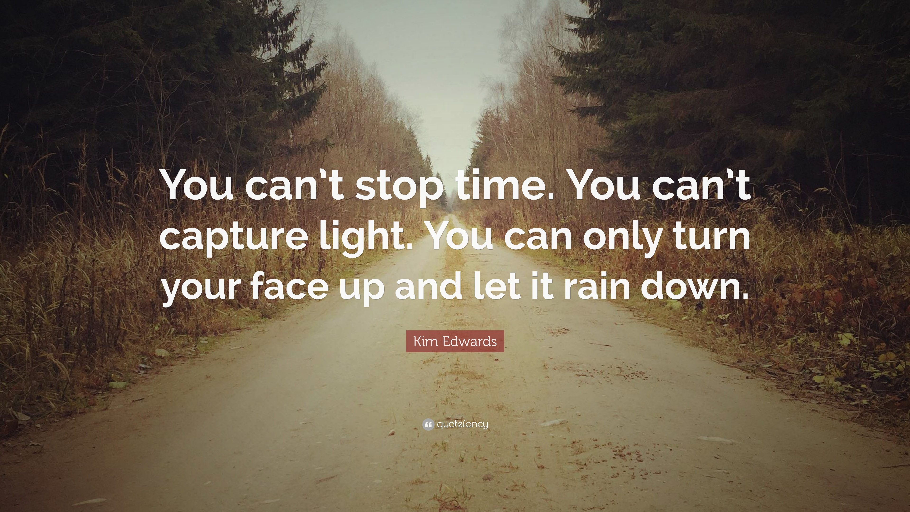 Kim Edwards Quote You Cant Stop Time You Cant Capture Light