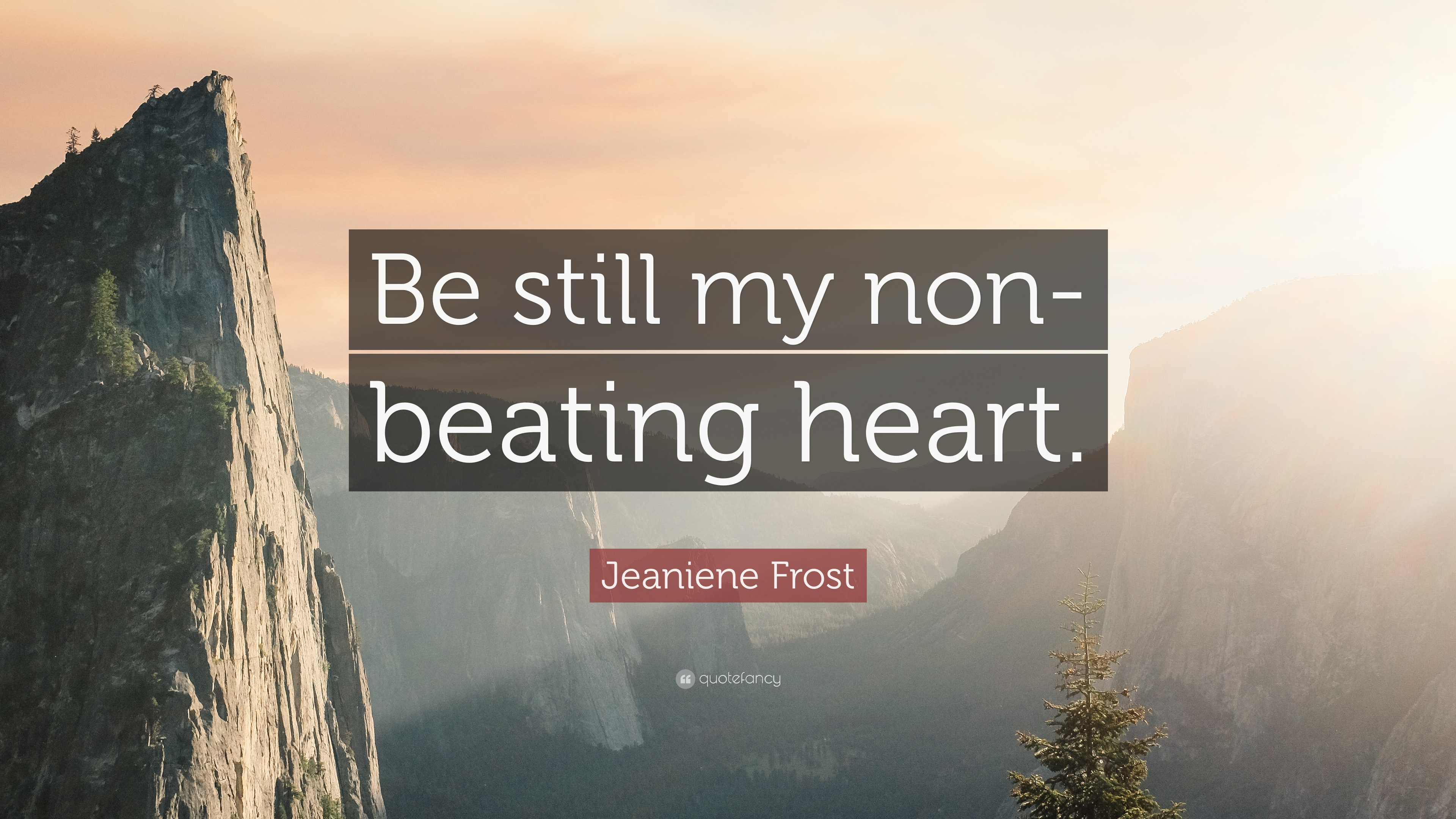 Jeaniene Frost Quote Be Still My Non Beating Heart 7 Wallpapers
