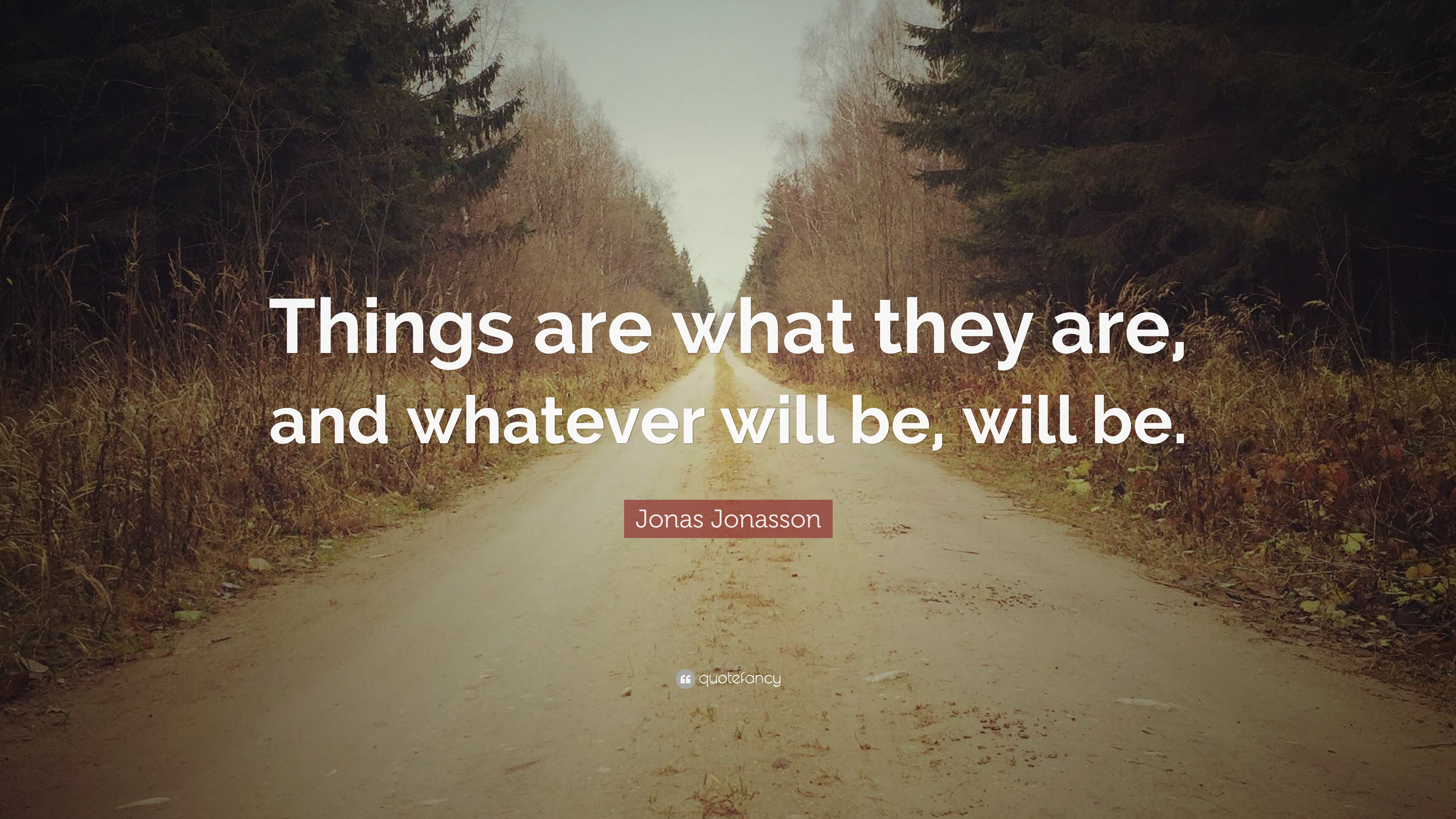 Jonas Jonasson Quote Things Are What They Are And Whatever Will
