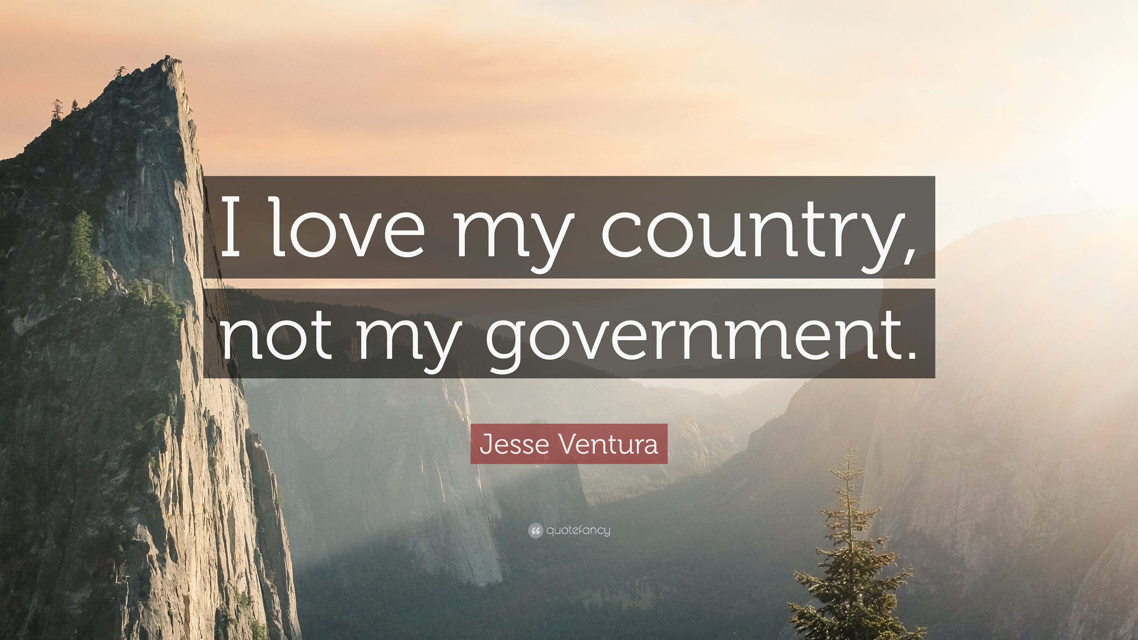 Jesse Ventura Quote I Love My Country Not My Government 12