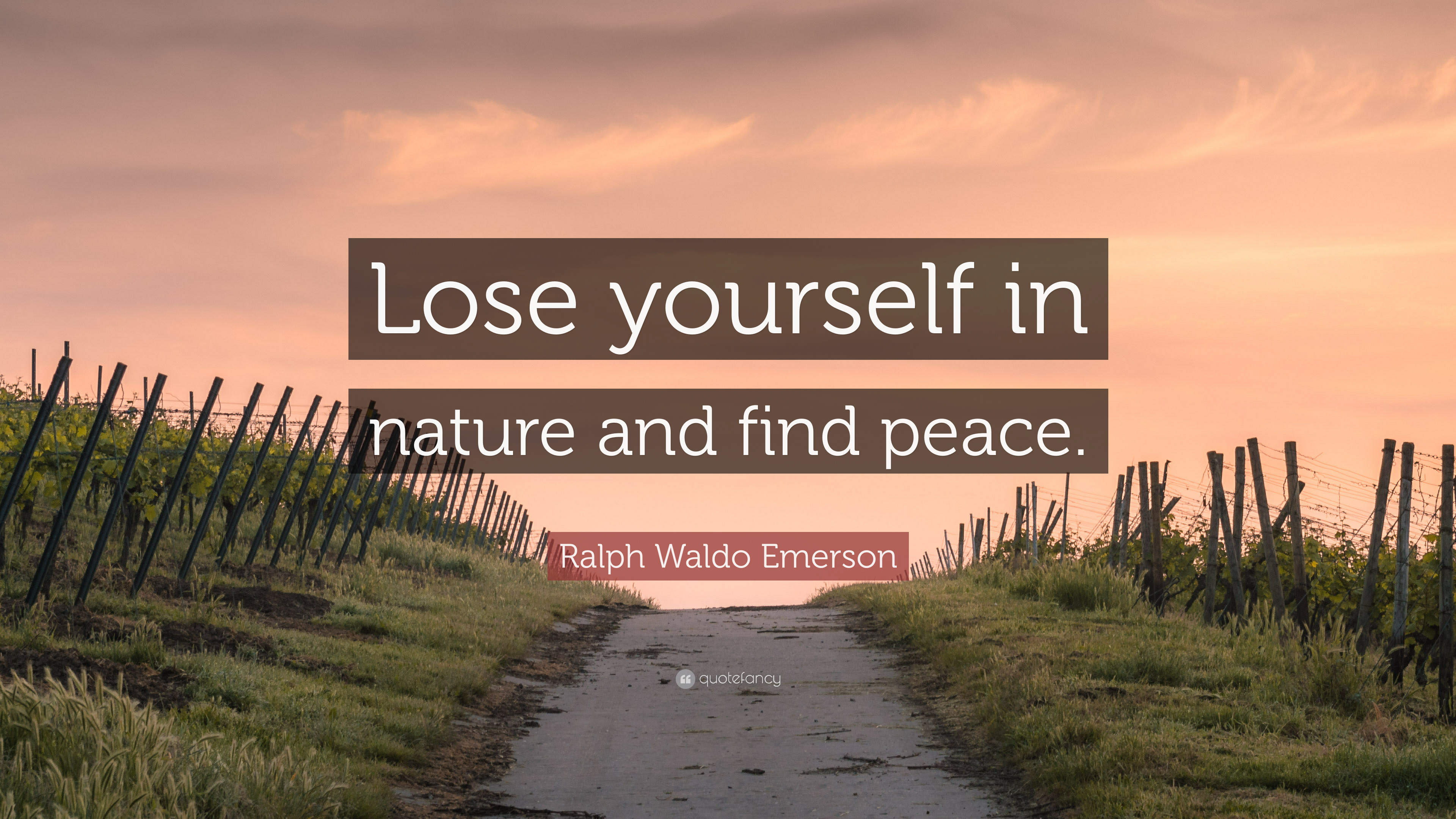 """Ralph Waldo Emerson Quote: """"Lose yourself in nature and find ..."""