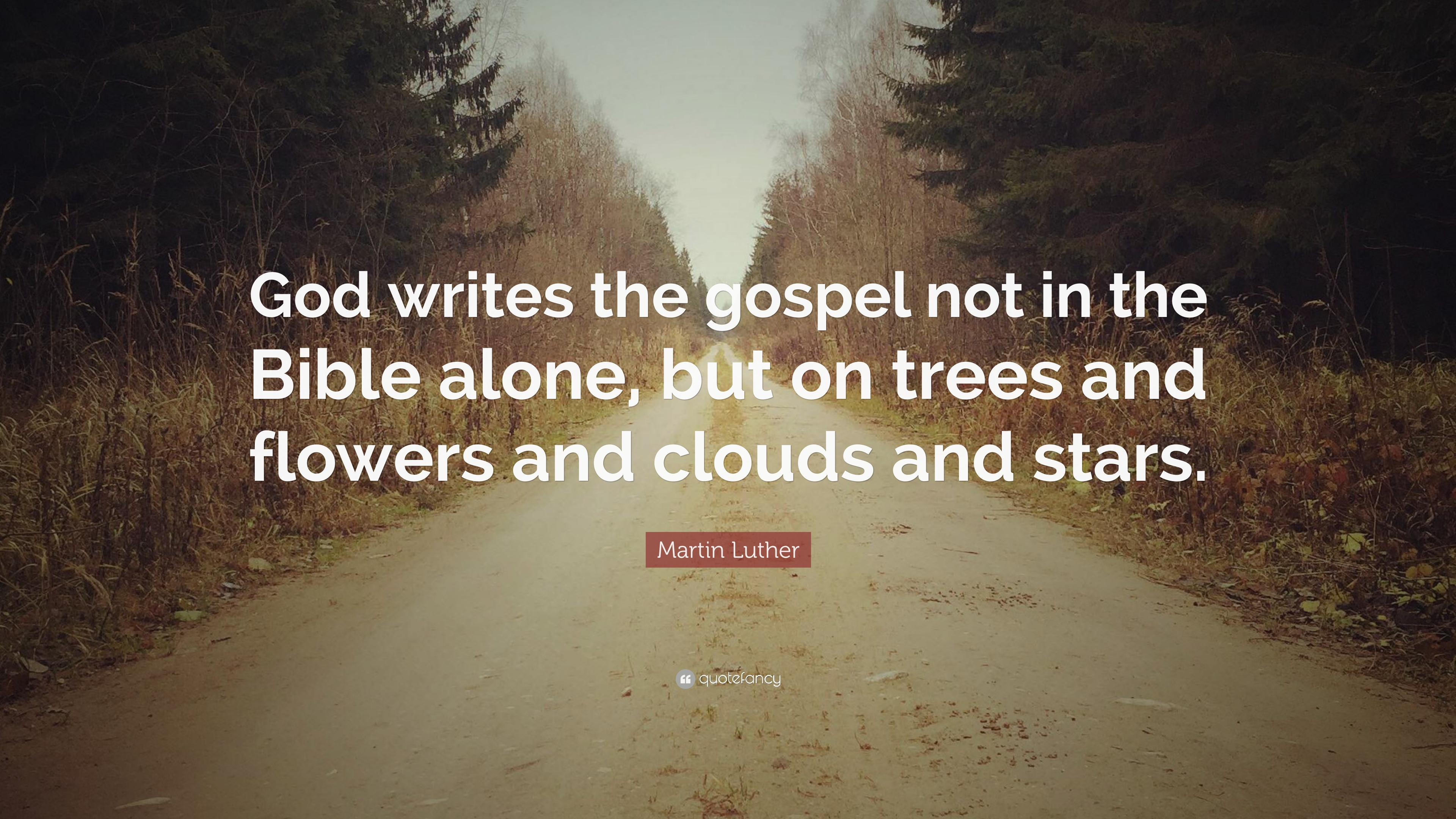 Martin Luther Quote God Writes The Gospel Not In The Bible Alone