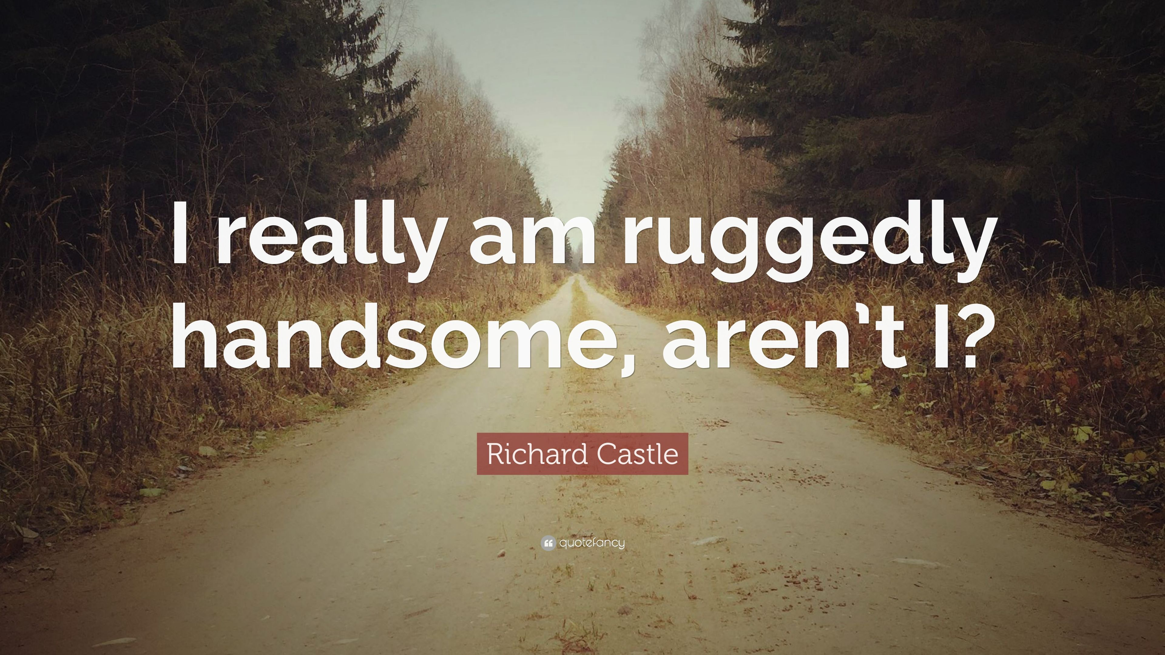 """richard castle quote """"i really am ruggedly handsome aren t i"""