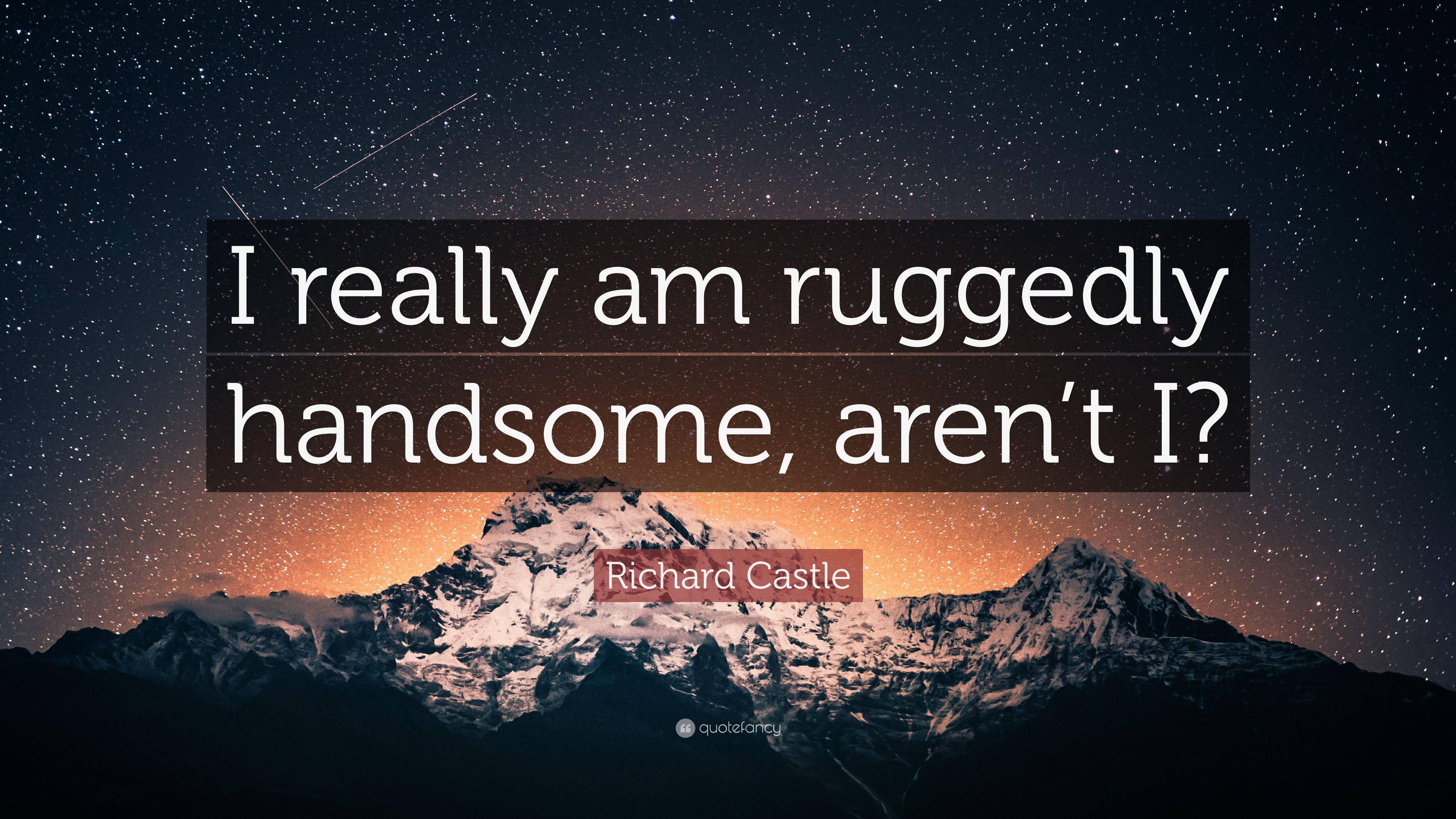 Richard Castle Quote I Really Am Ruggedly Handsome Arent I 7