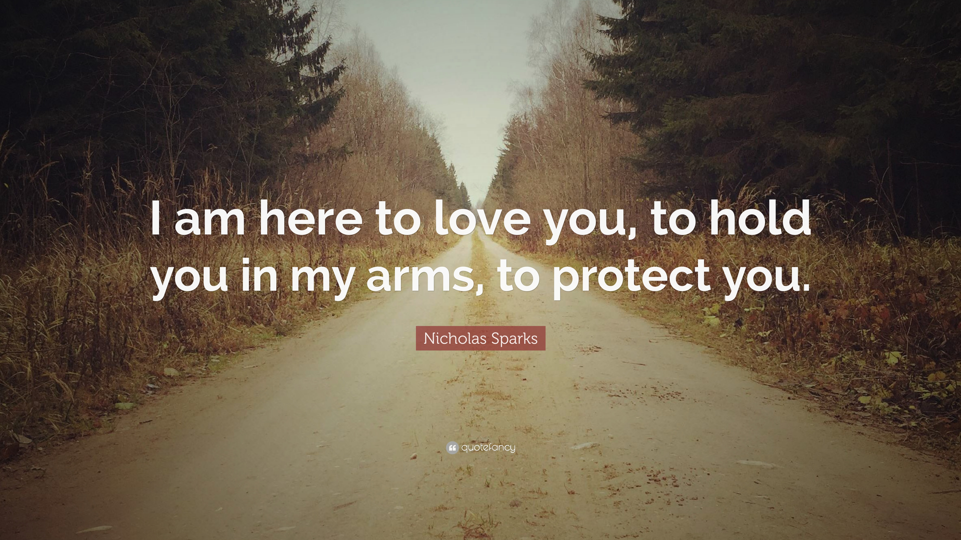 Nicholas Sparks Quote I Am Here To Love You To Hold You In My