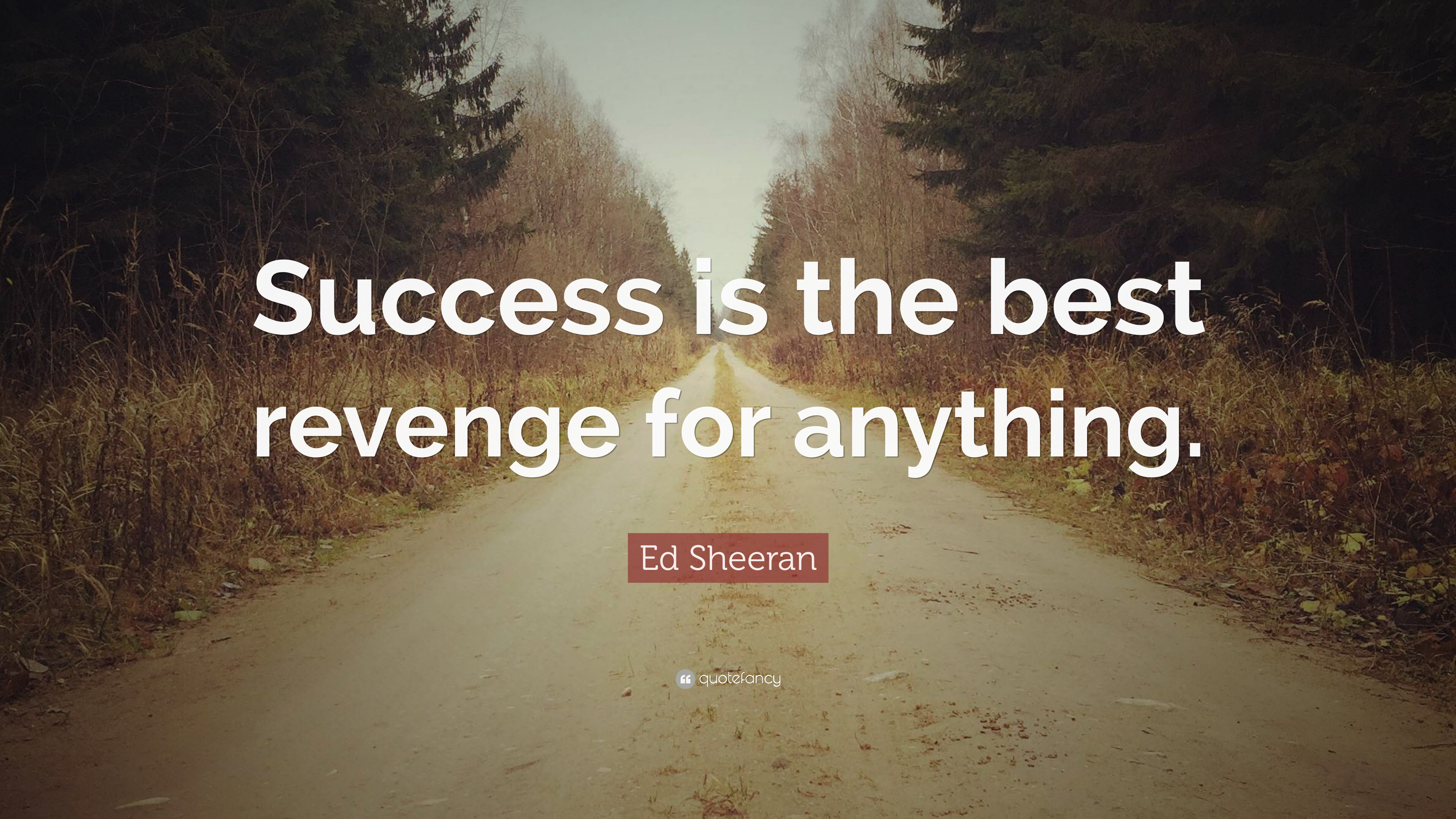 Ed Sheeran Quote Success Is The Best Revenge For Anything 12
