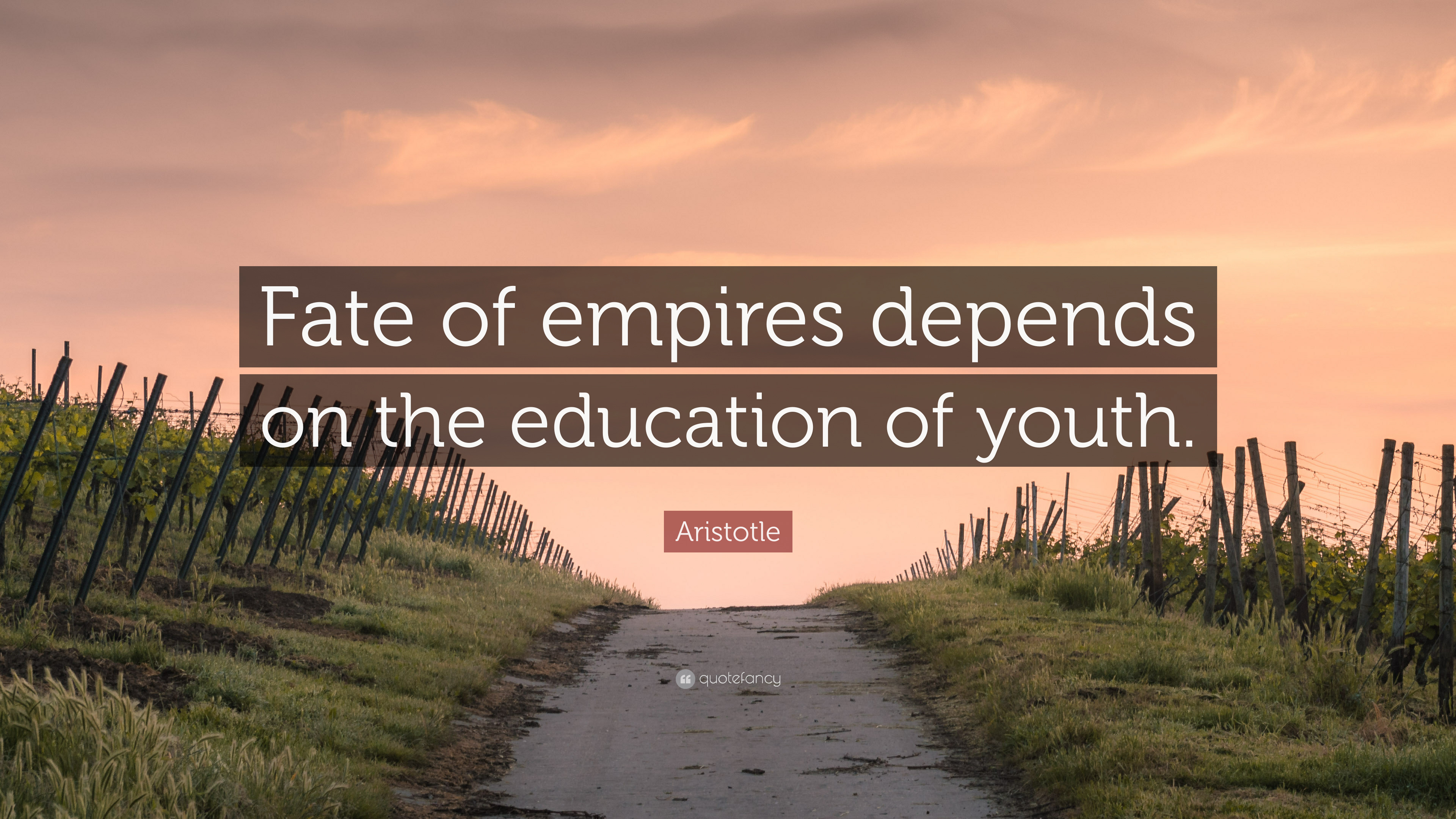 aristotle quote about youth