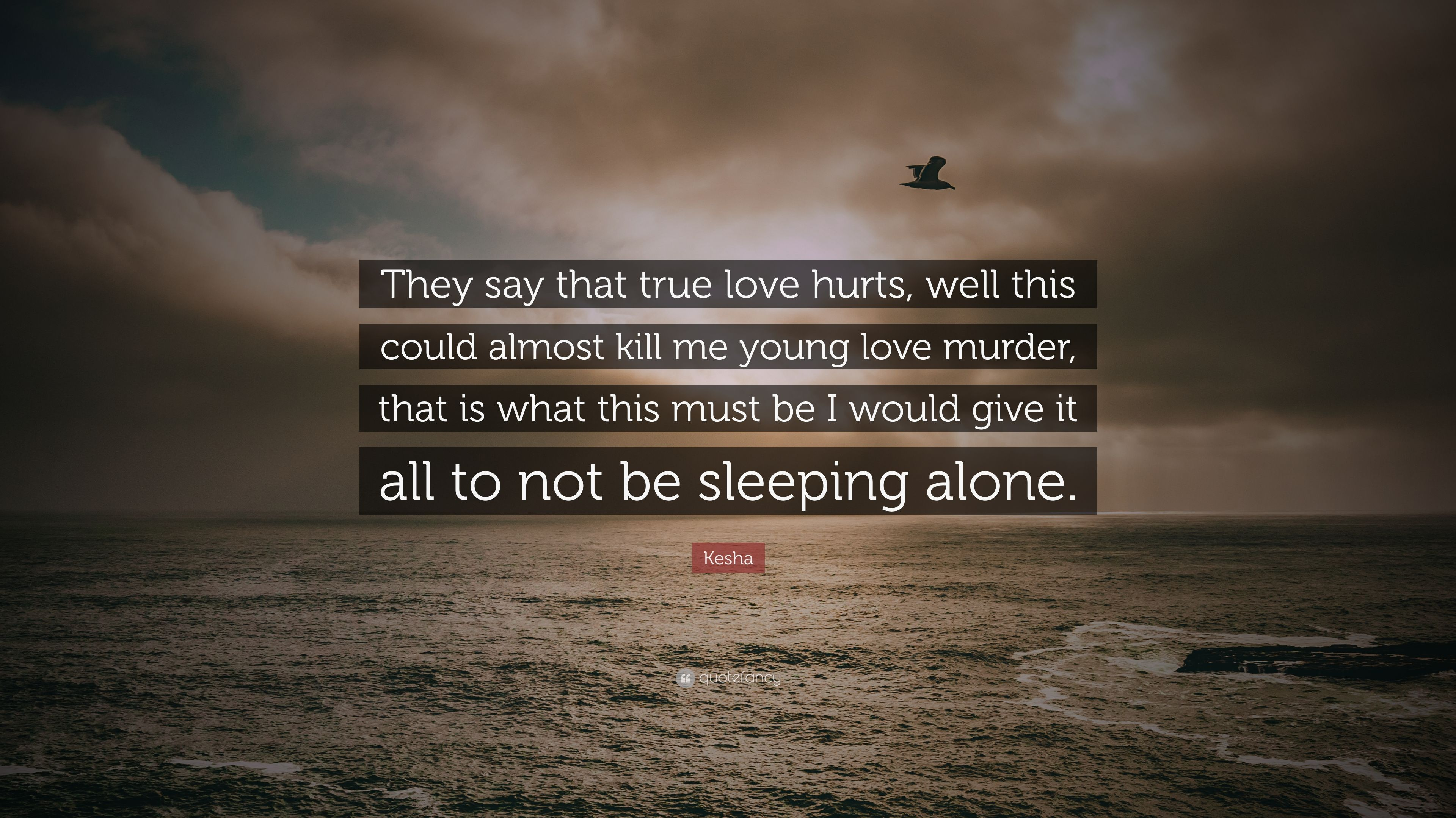 "Kesha Quote: ""They say that true love hurts, well this could ..."