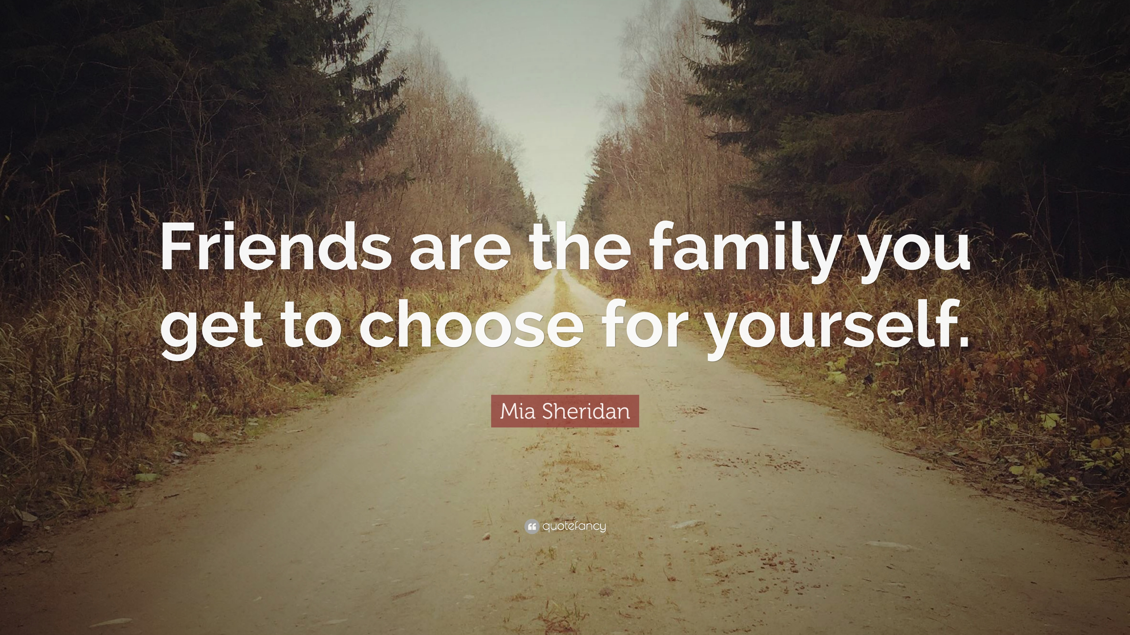 Mia Sheridan Quote Friends Are The Family You Get To Choose For