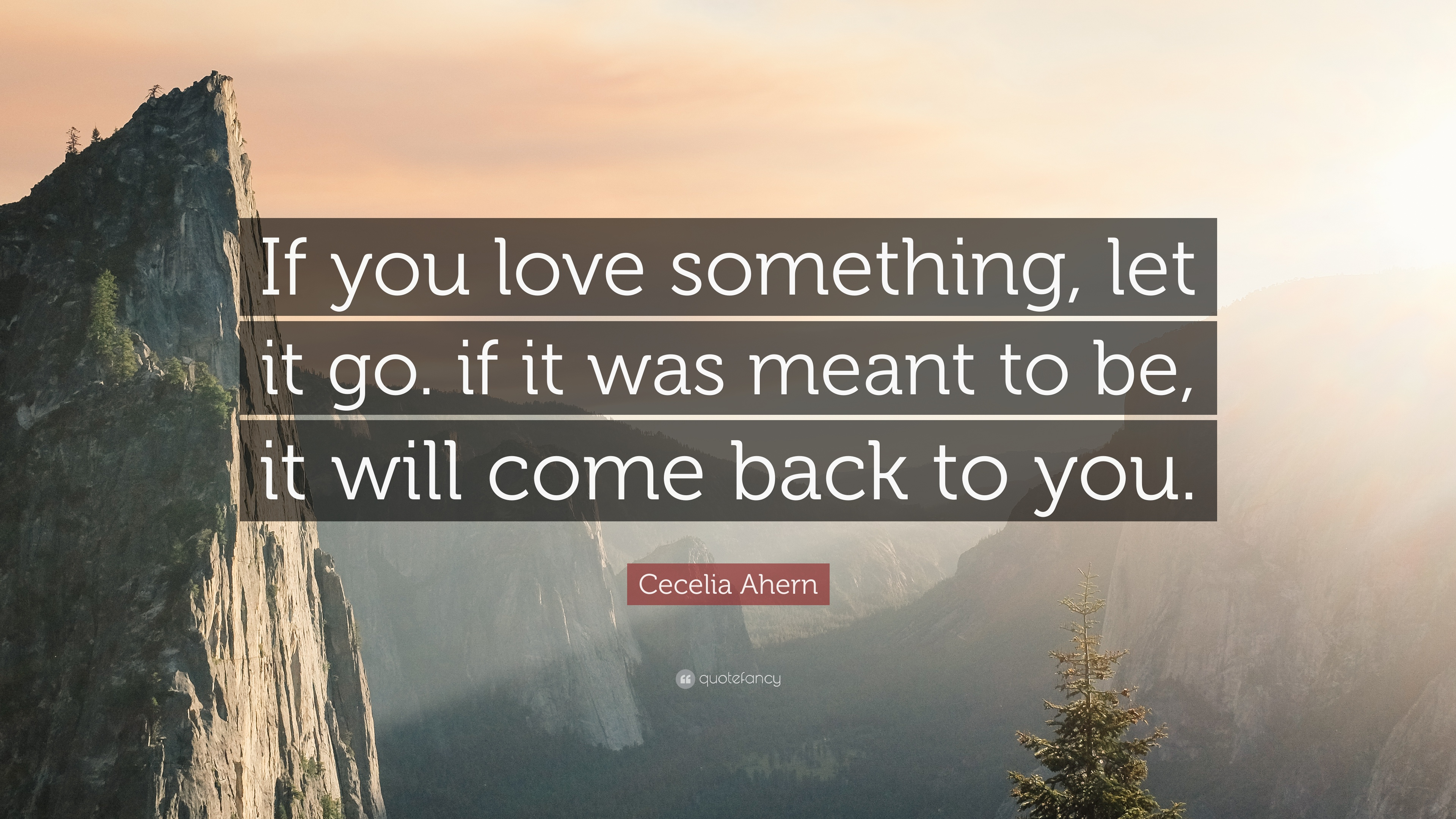 "Let It Go Quotes Cecelia Ahern Quote ""If You Love Something Let It Goif It Was"