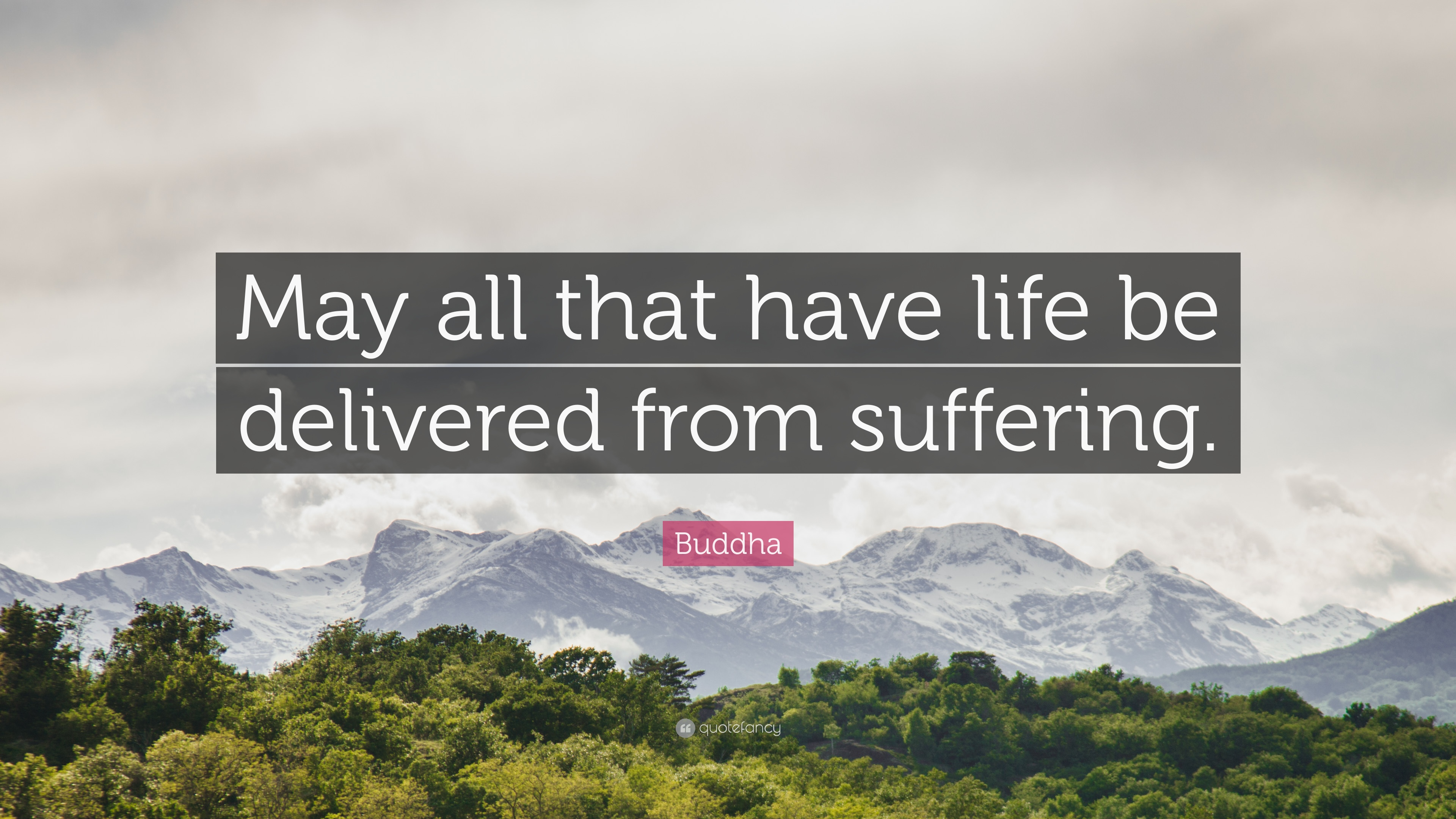 """Buddha Quote: """"May all that have life be delivered from suffering ..."""
