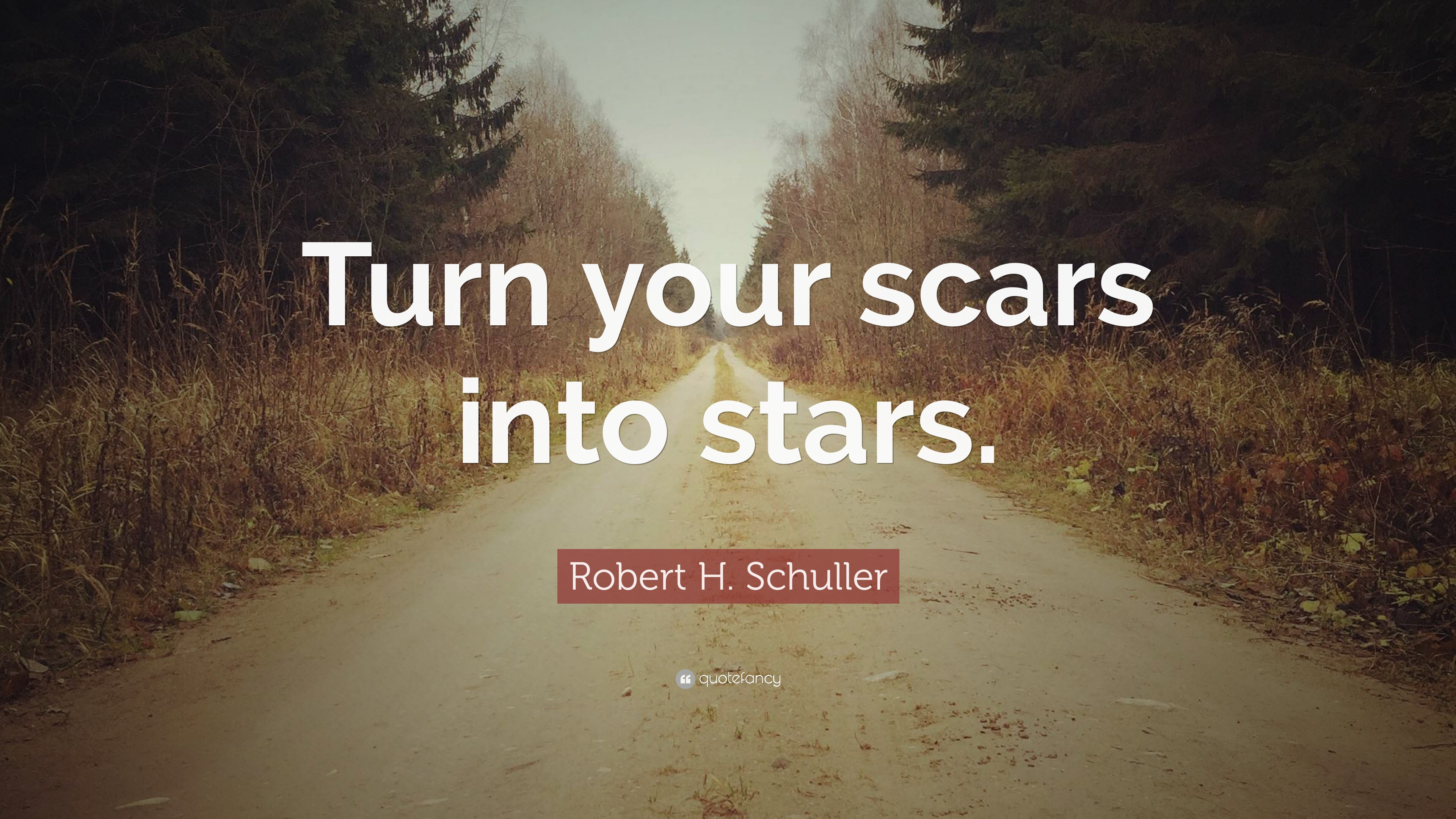 """Robert H. Schuller Quote: """"Turn Your Scars Into Stars"""