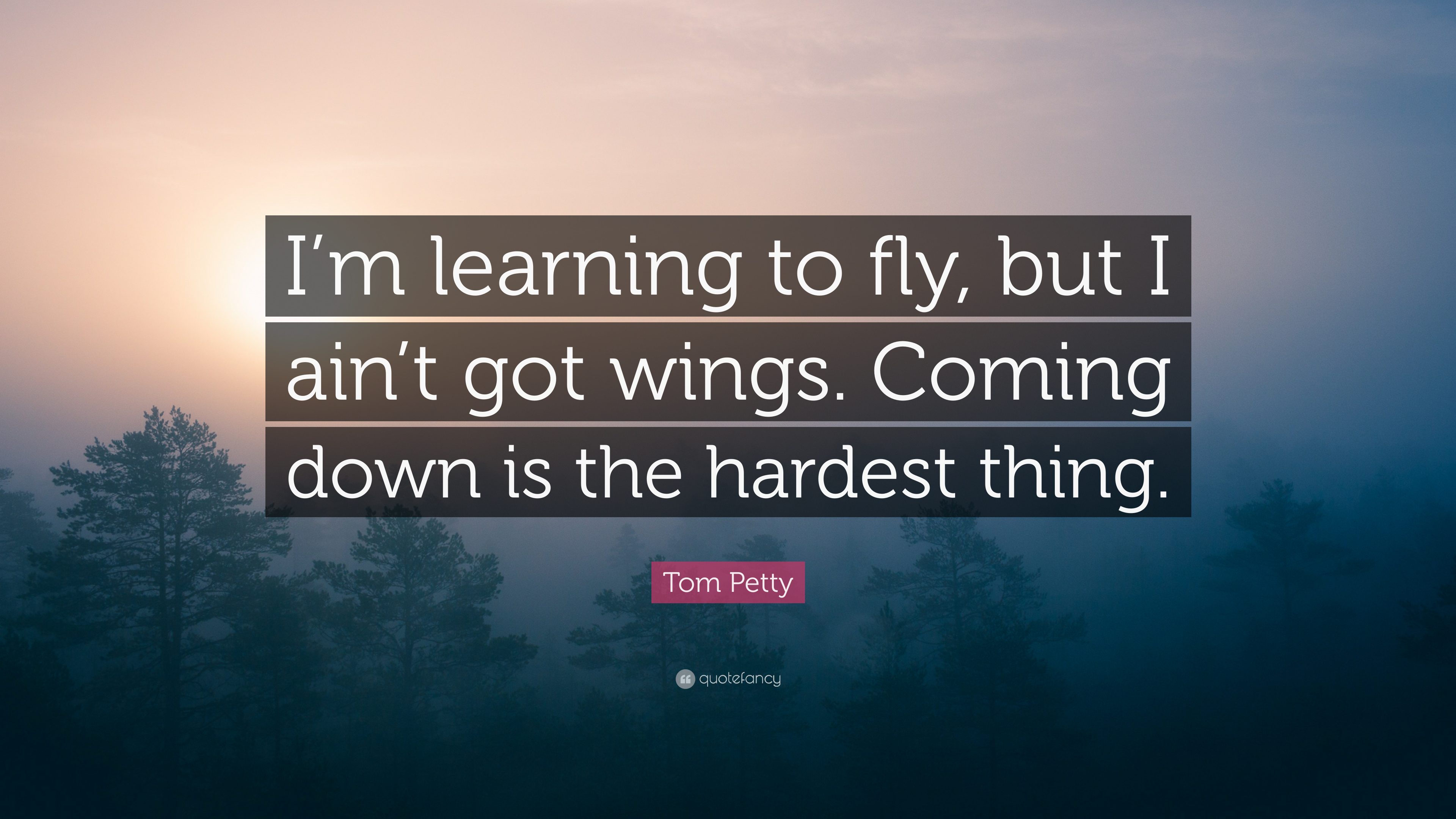 """Tom Petty Quote: """"I'm Learning To Fly, But I Ain't Got"""