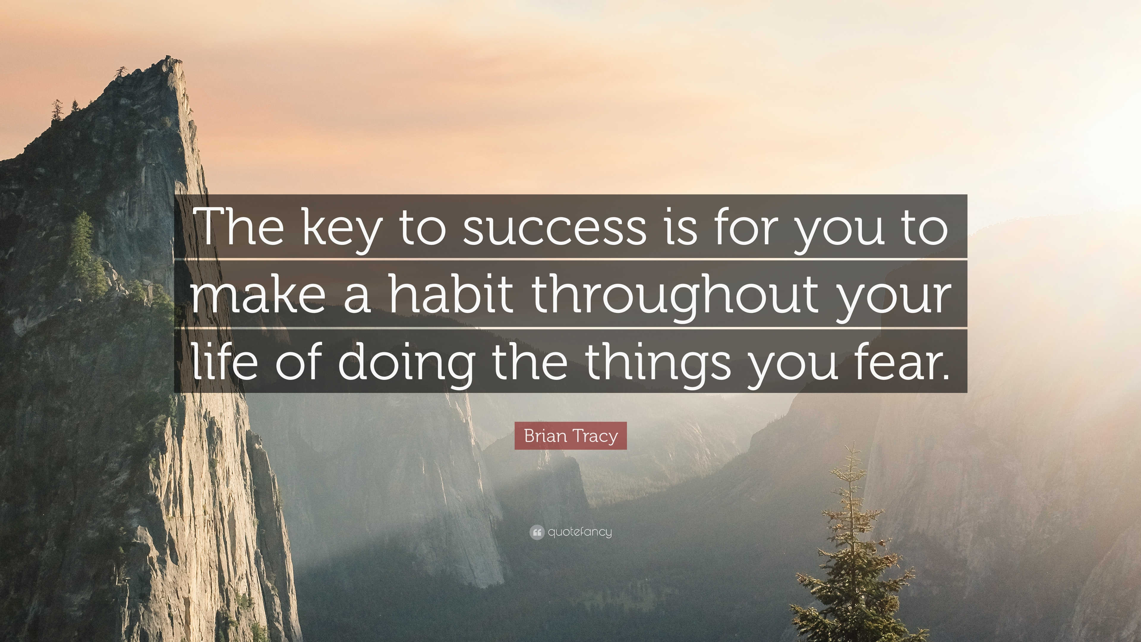 know success key don quote habit going hand walk road hold better fear alfred throughout doing musset tracy brian things