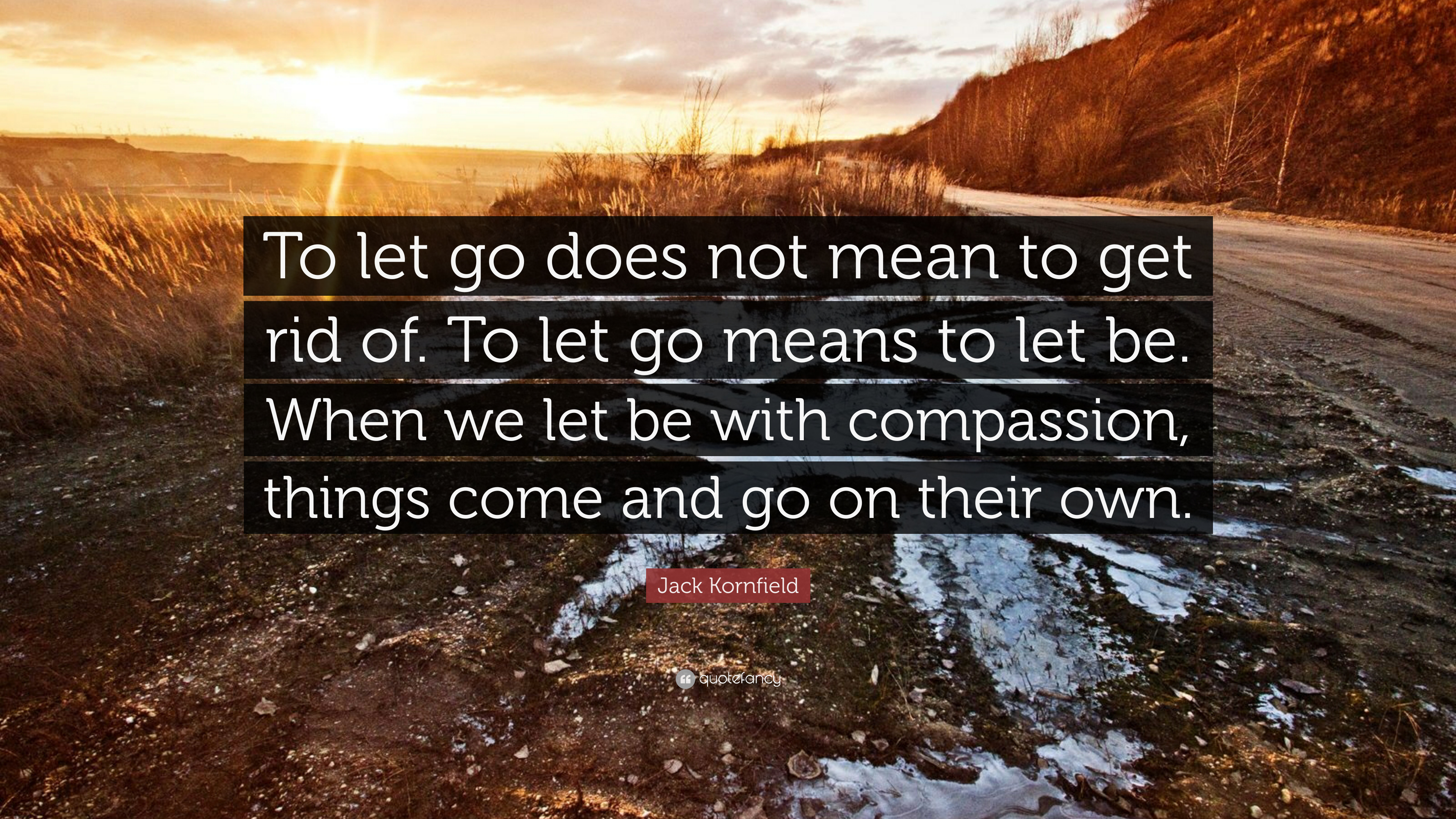 """Image result for """"To let go does not mean to get rid of. To let go means to let be. When we let be with compassion, things come and go on their own."""