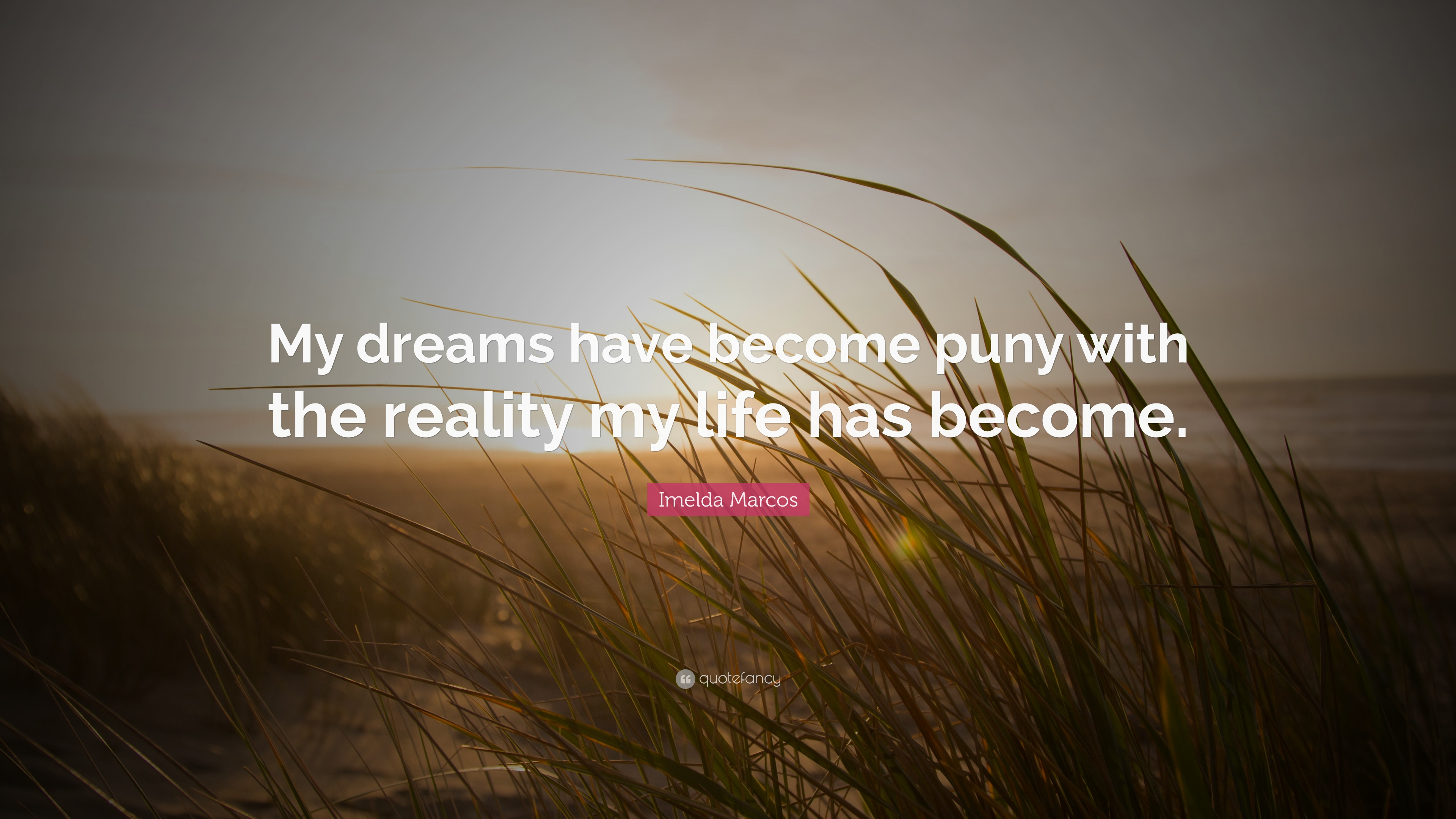 Imelda Marcos Quote My Dreams Have Become Puny With The Reality Life Has