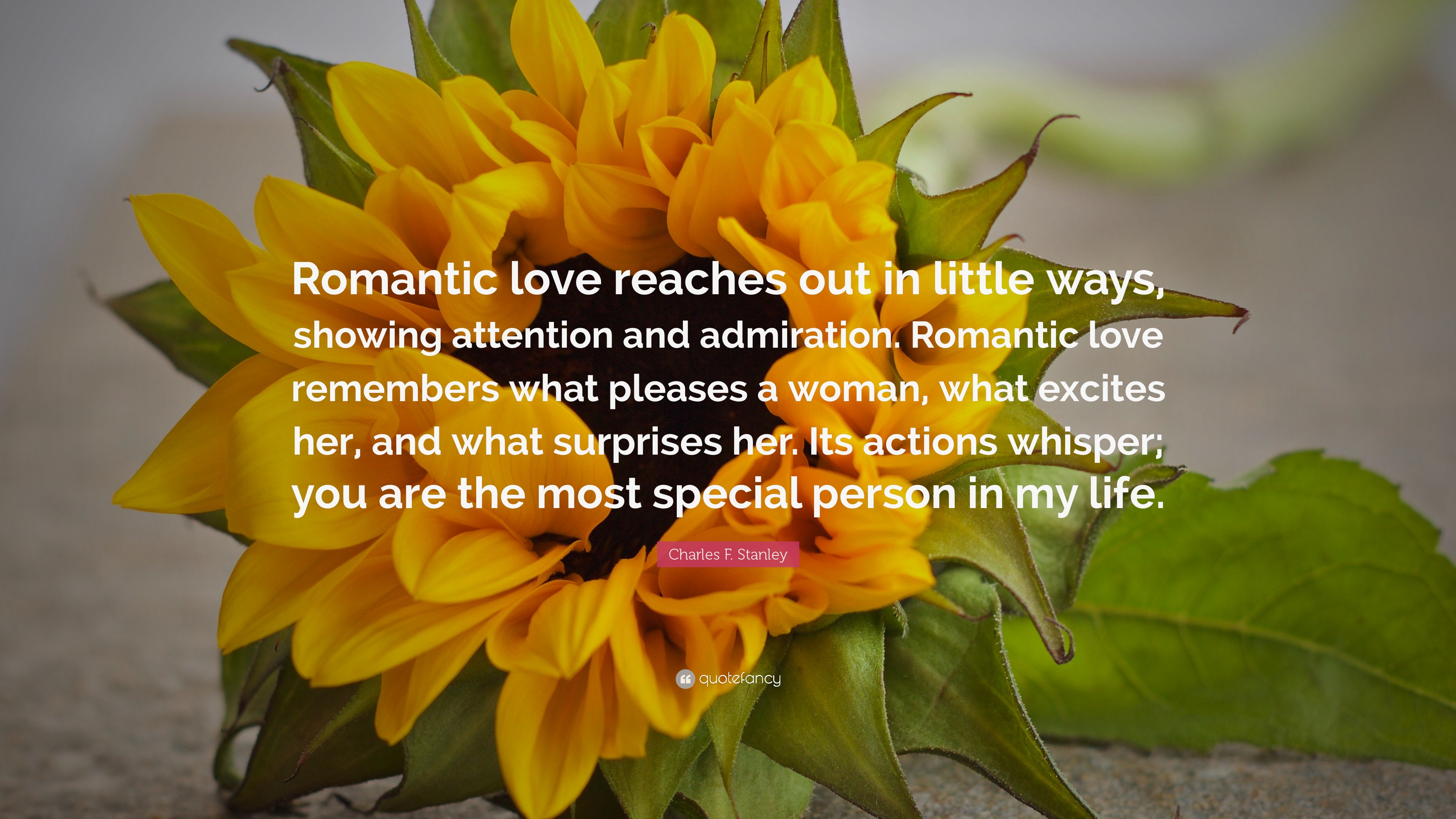 Charles F Stanley Quote Romantic Love Reaches Out In Little Ways