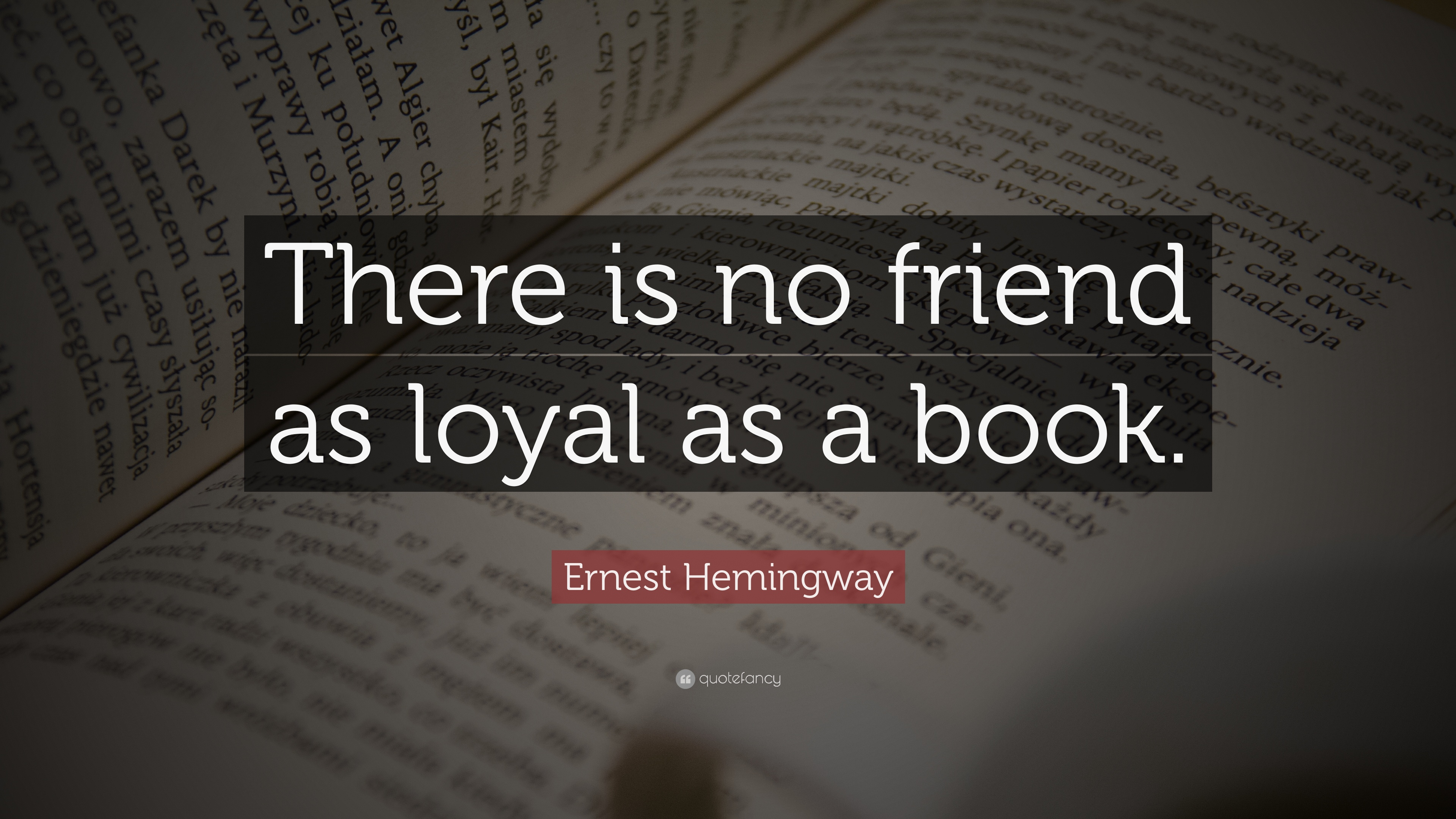 Quotes From Books Captivating Quotes About Books And Reading 22 Wallpapers  Quotefancy