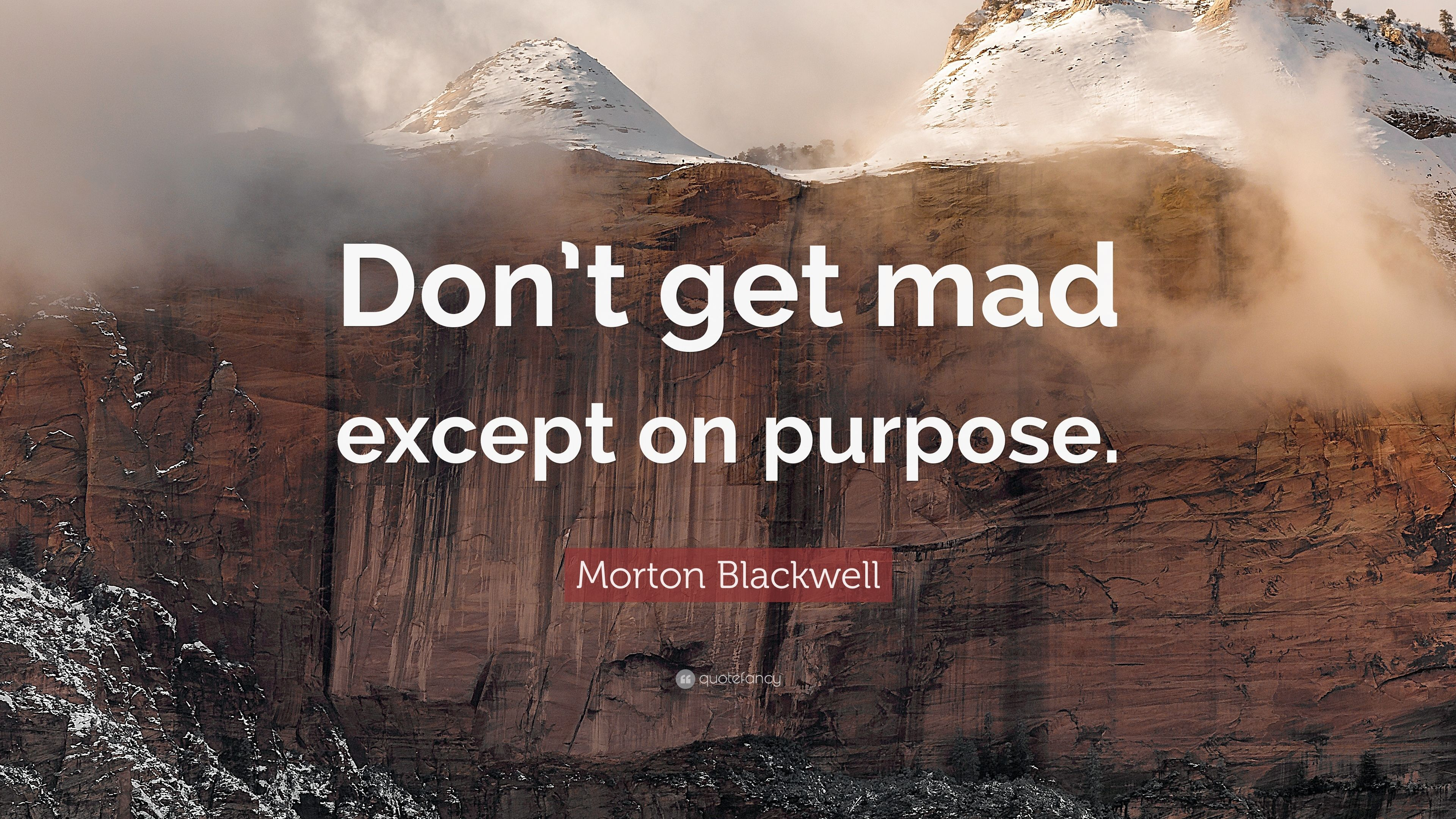 Morton Blackwell Quote: U201cDonu0027t Get Mad Except On Purpose.u201d