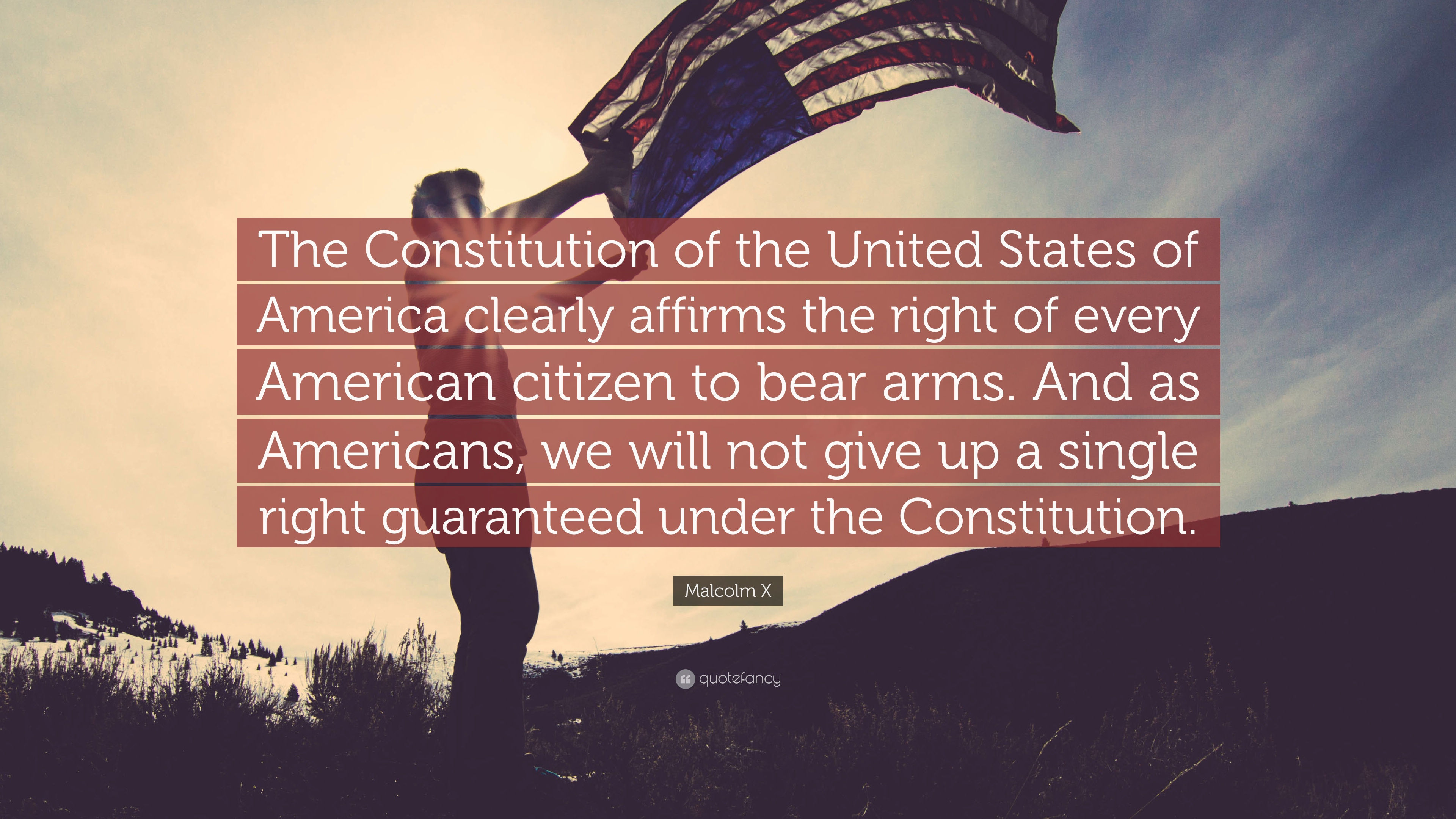 an overview of the right to bear arms in the united states of america