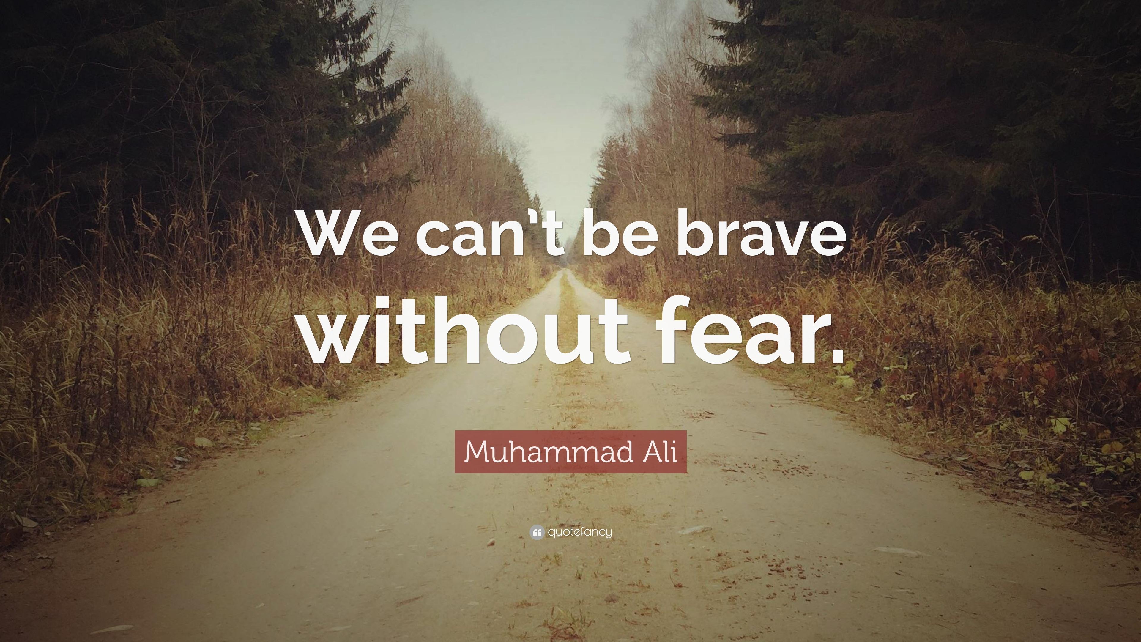 Image result for brave fear