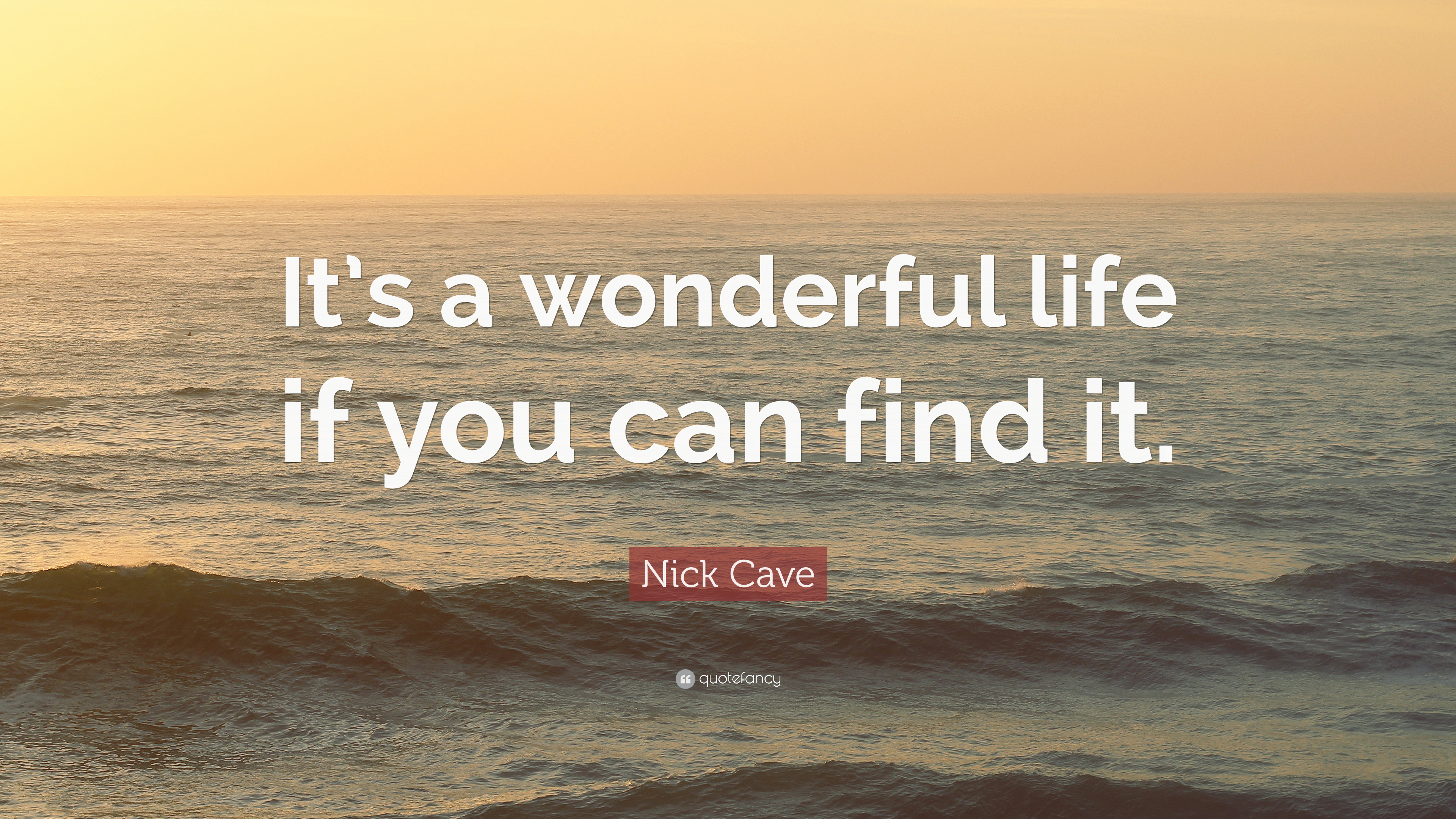 Nick Cave Quote It S A Wonderful Life If You Can Find It 7