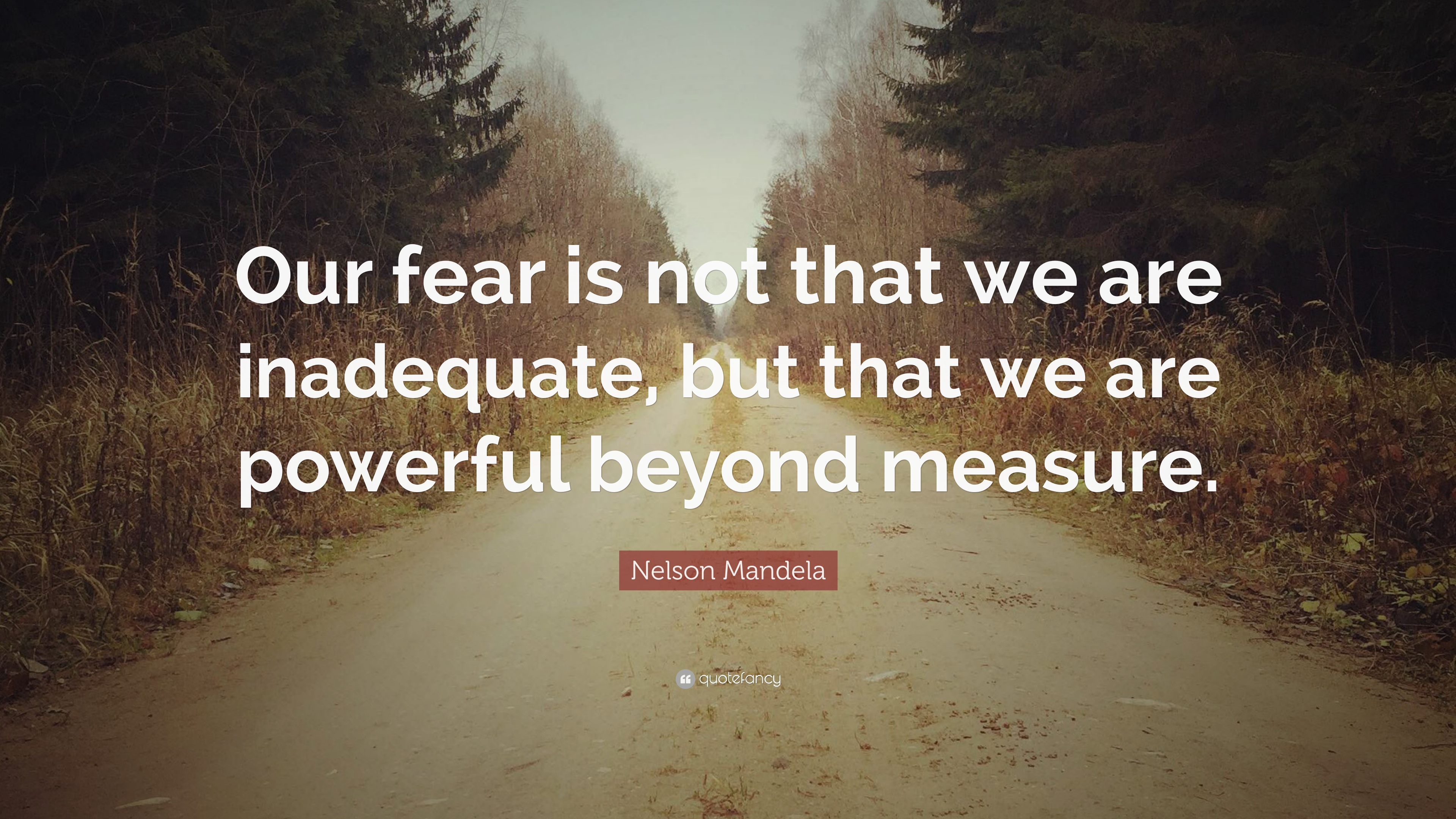 Nelson Mandela Quote Our Fear Is Not That We Are Inadequate But
