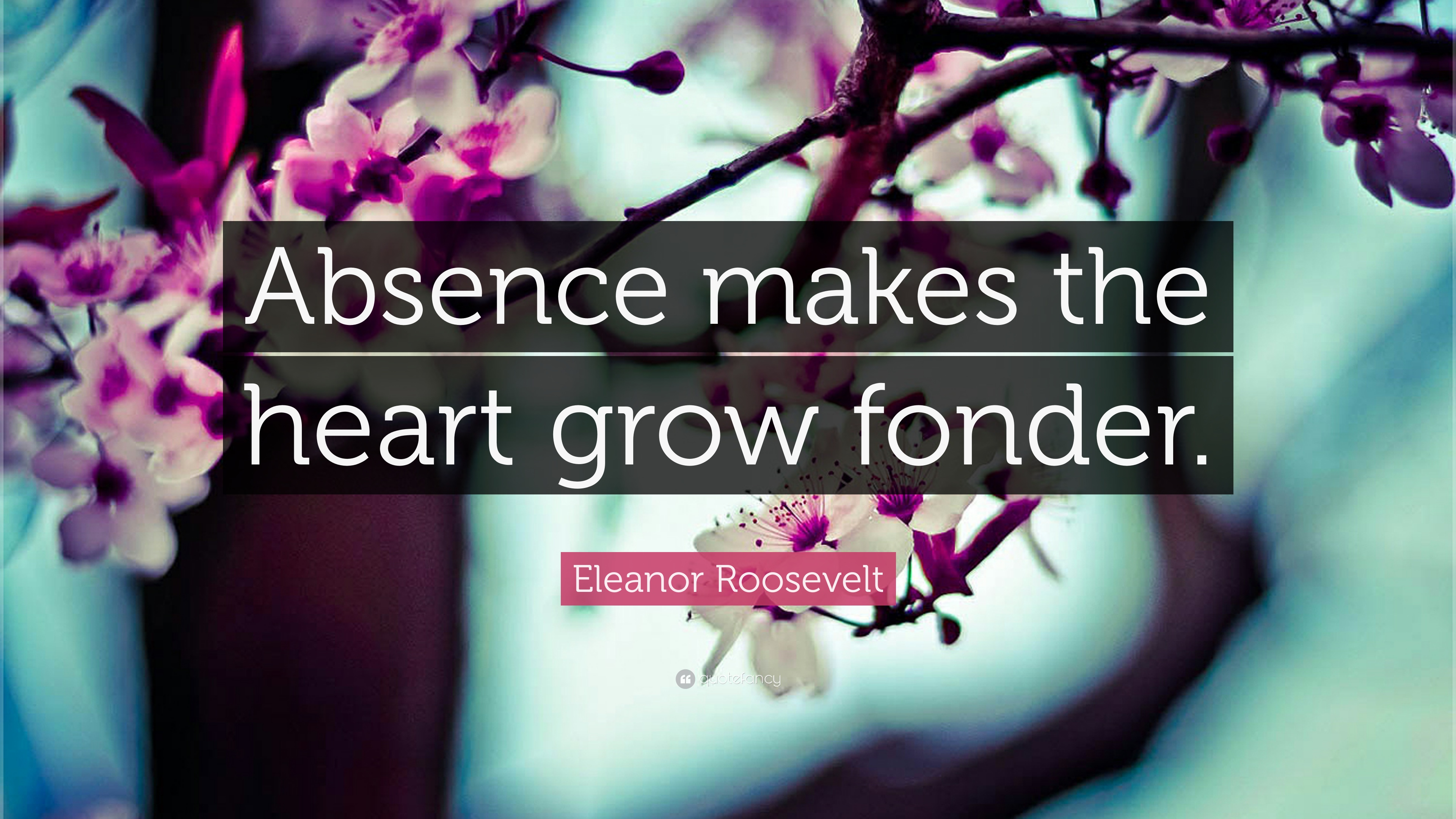 Eleanor Roosevelt Quote Absence Makes The Heart Grow Fonder 24