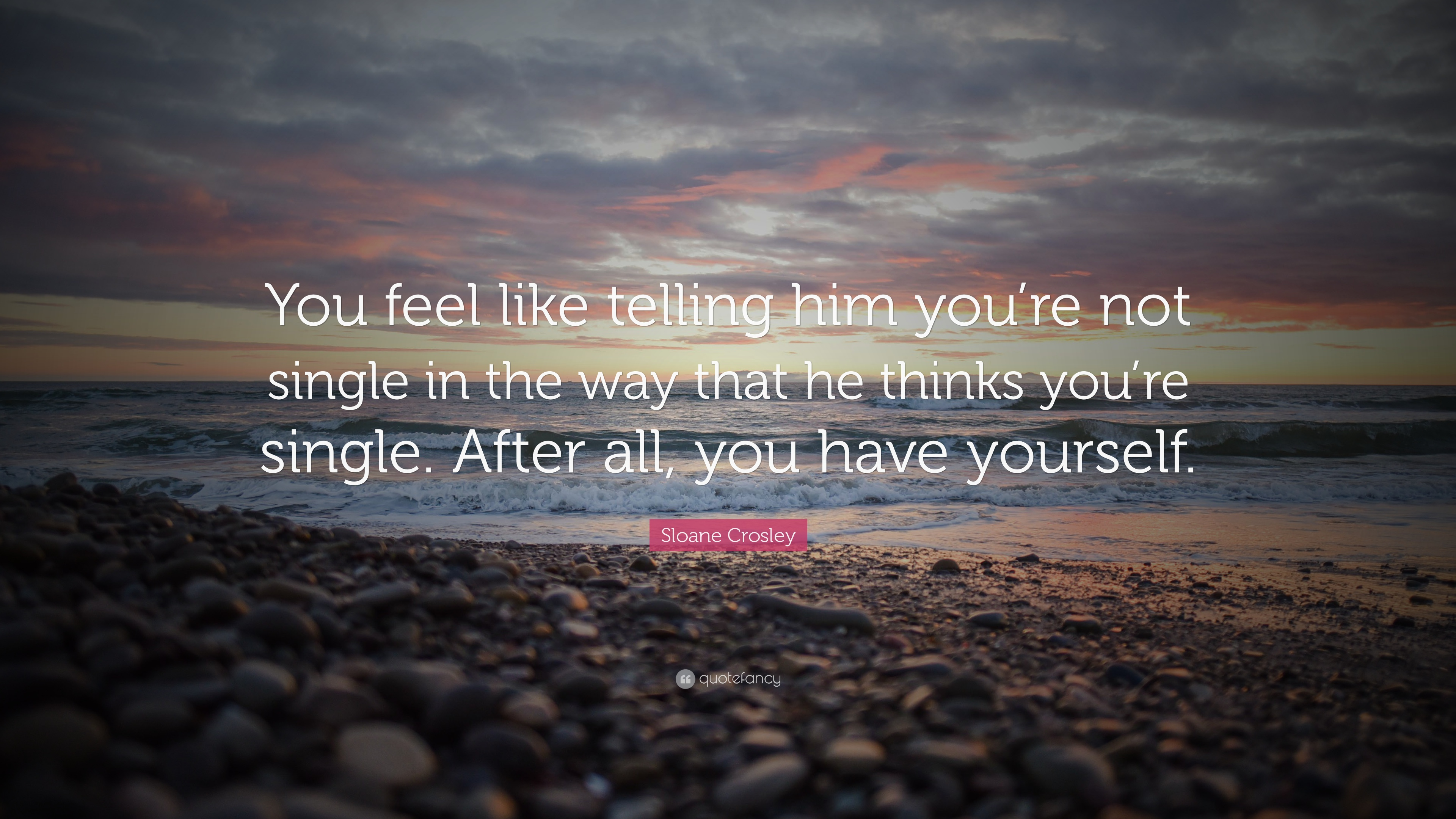 Sloane Crosley Quote You Feel Like Telling Him Youre Not Single In