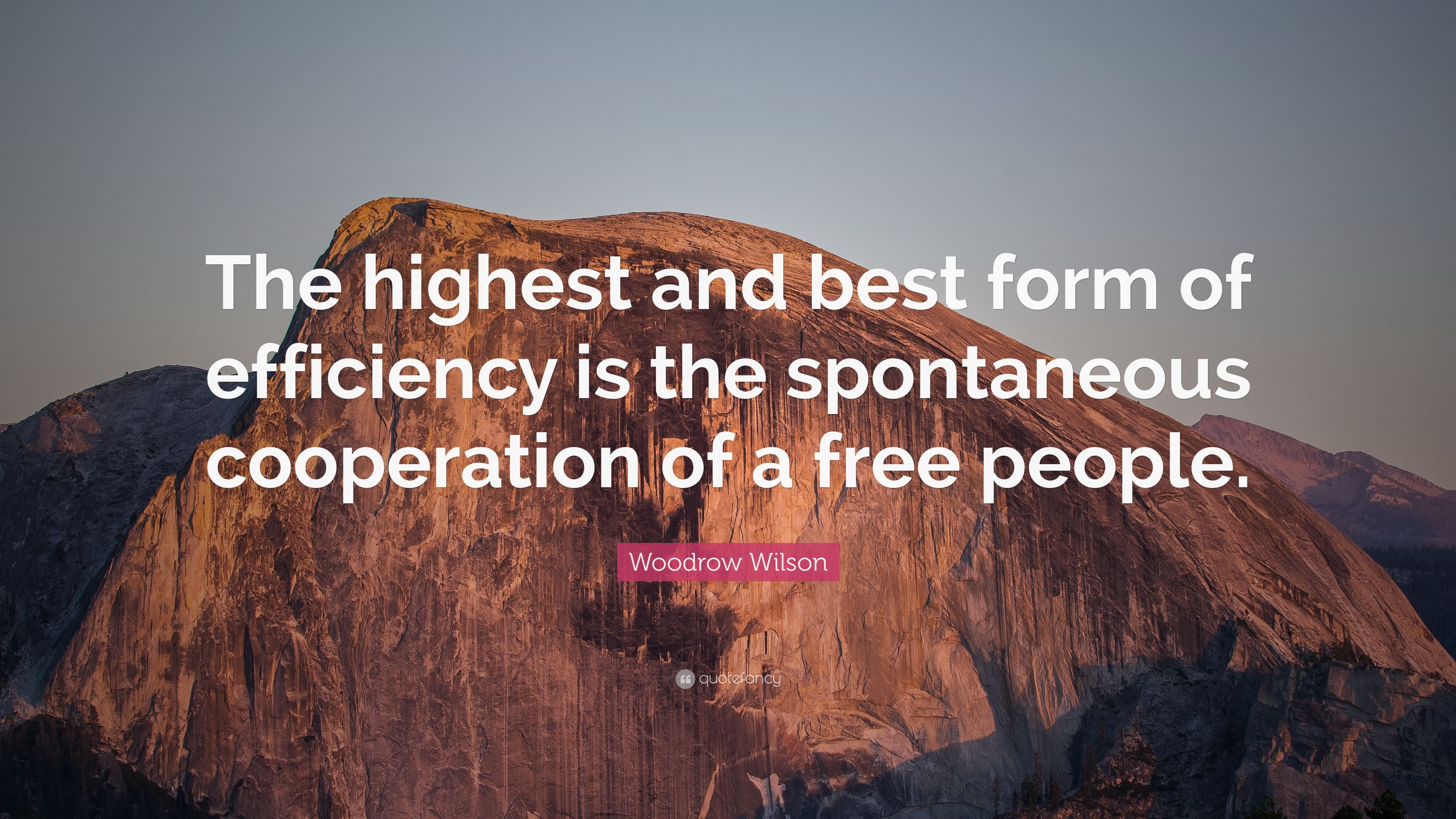 "Woodrow Wilson Quote: ""The highest and best form of efficiency is ..."