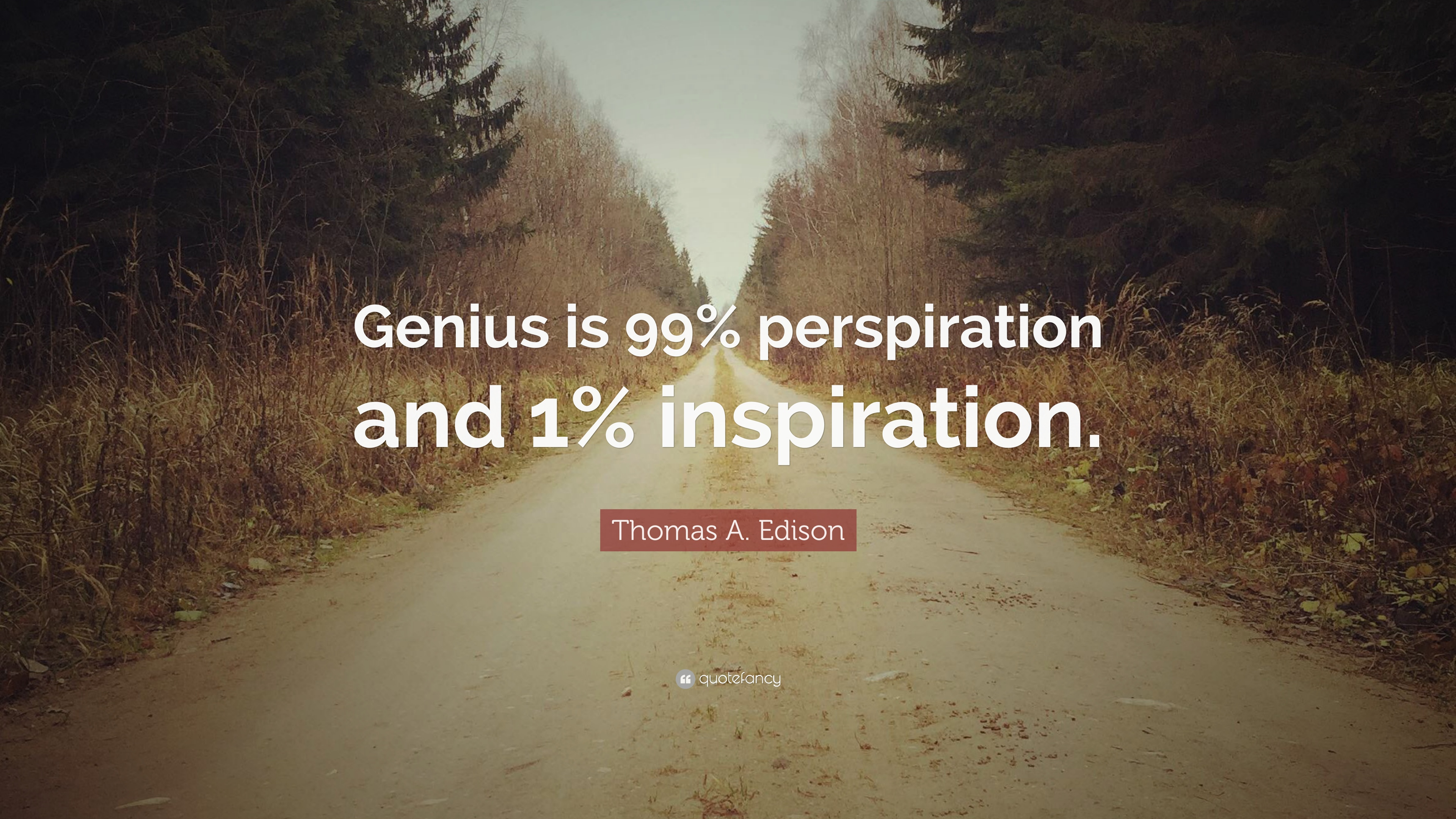 Thomas A. Edison Quotes (100 Wallpapers)
