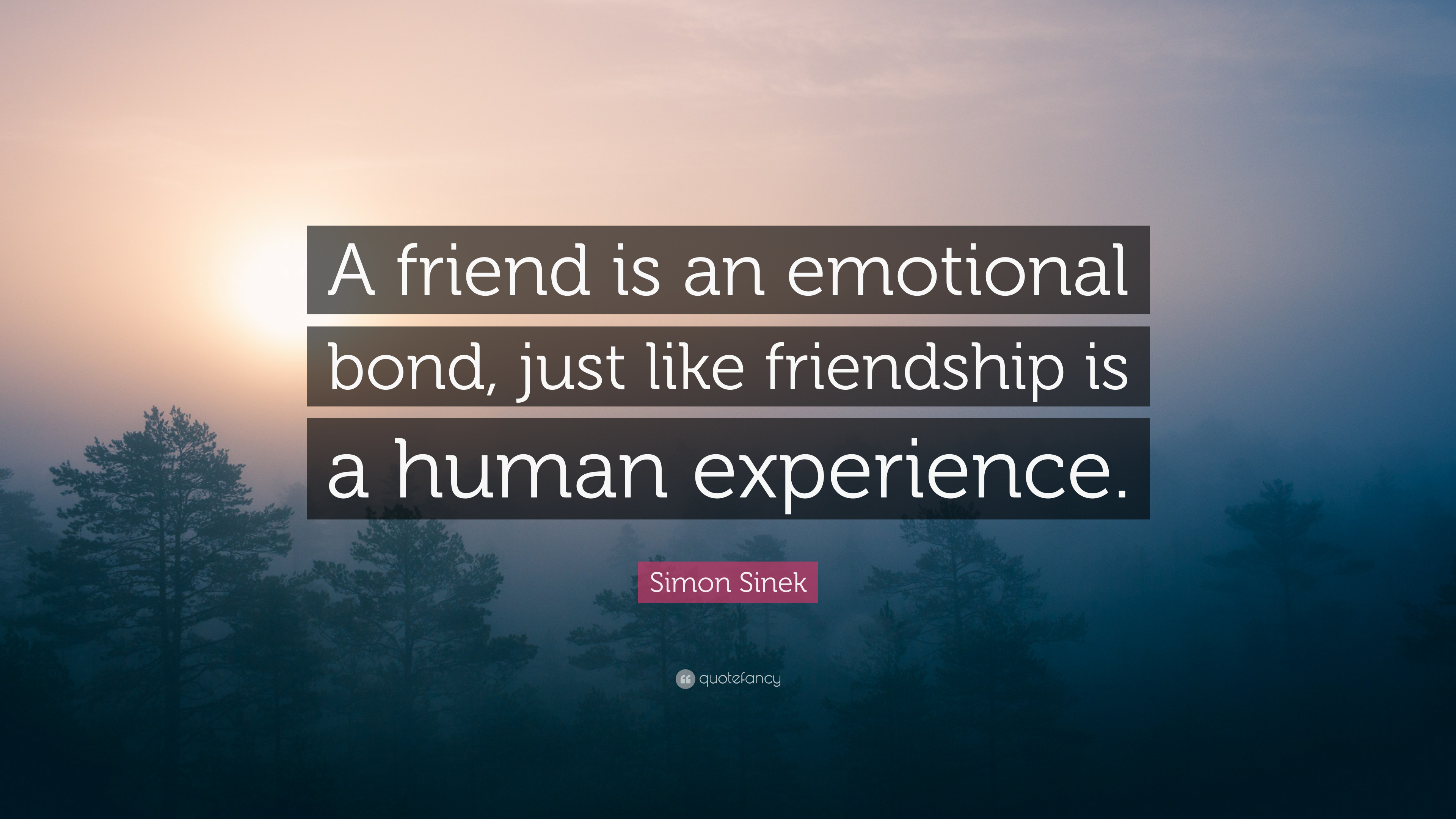 "simon sinek quote ""a friend is an emotional bond just like"