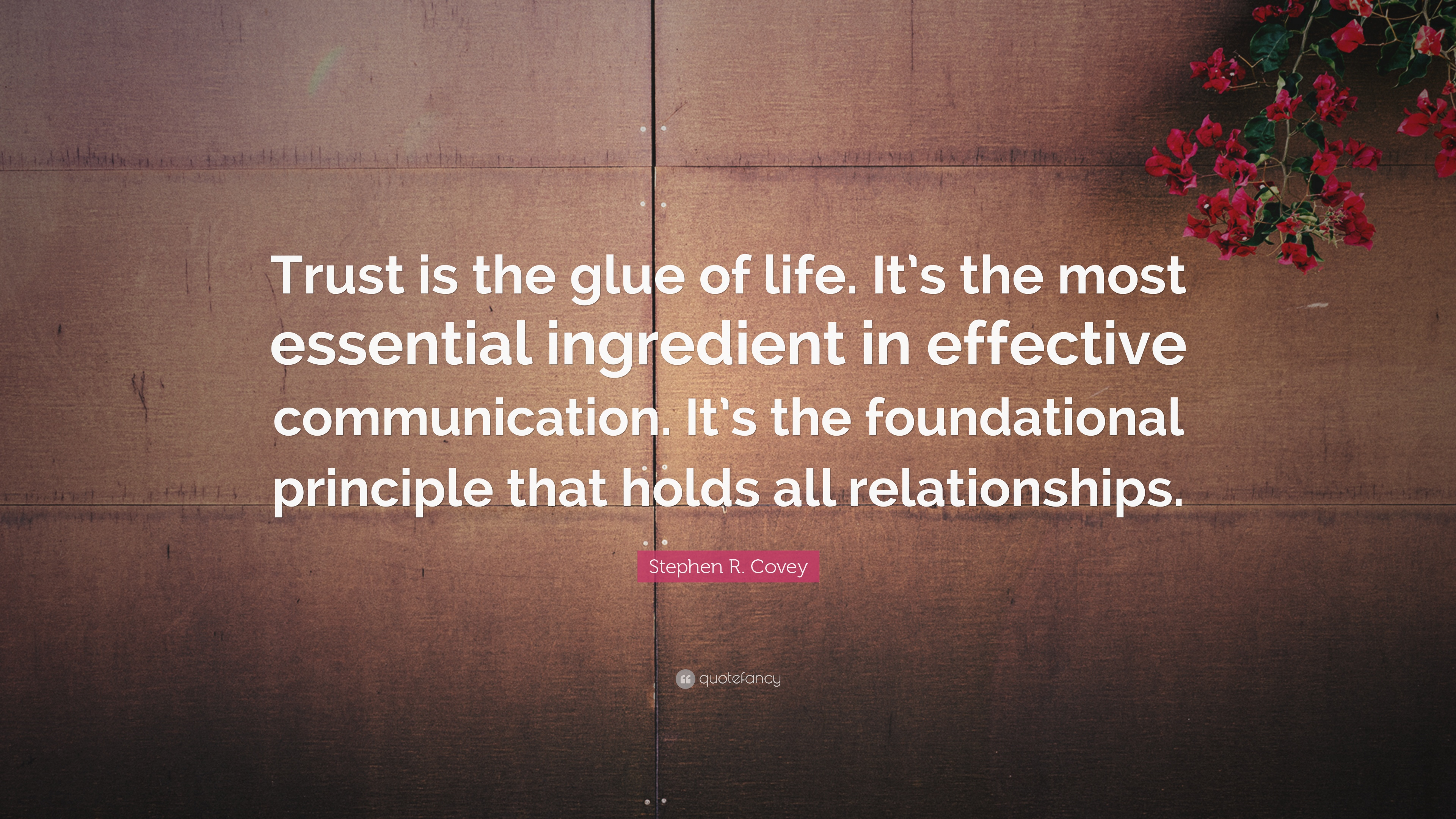 "Quotes About Life Stephen Rcovey Quote ""Trust Is The Glue Of Lifeit's The Most"