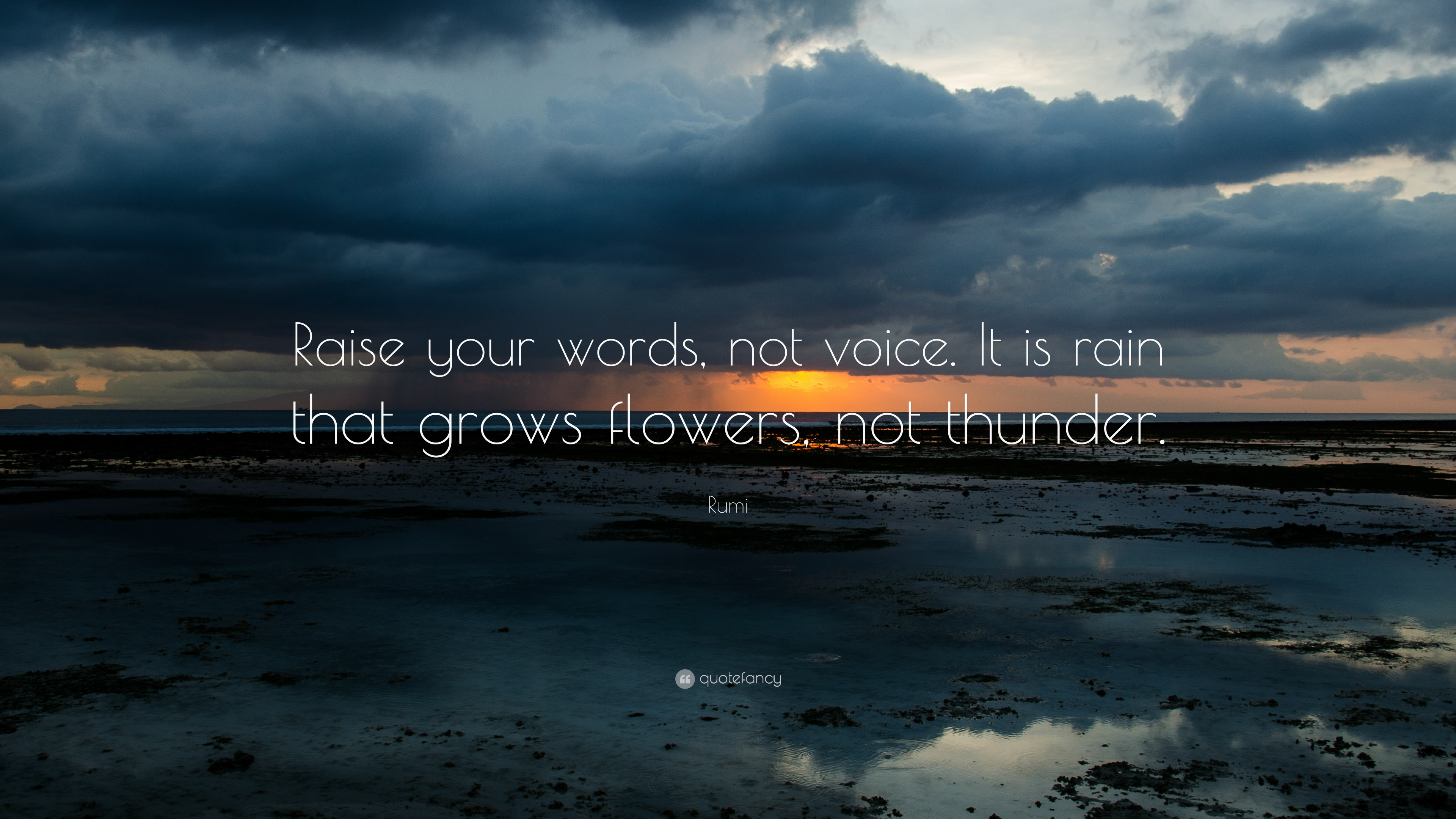 Rumi Raise Your Words Not Voice It Is Rain That Grows Flowers Not Thun...