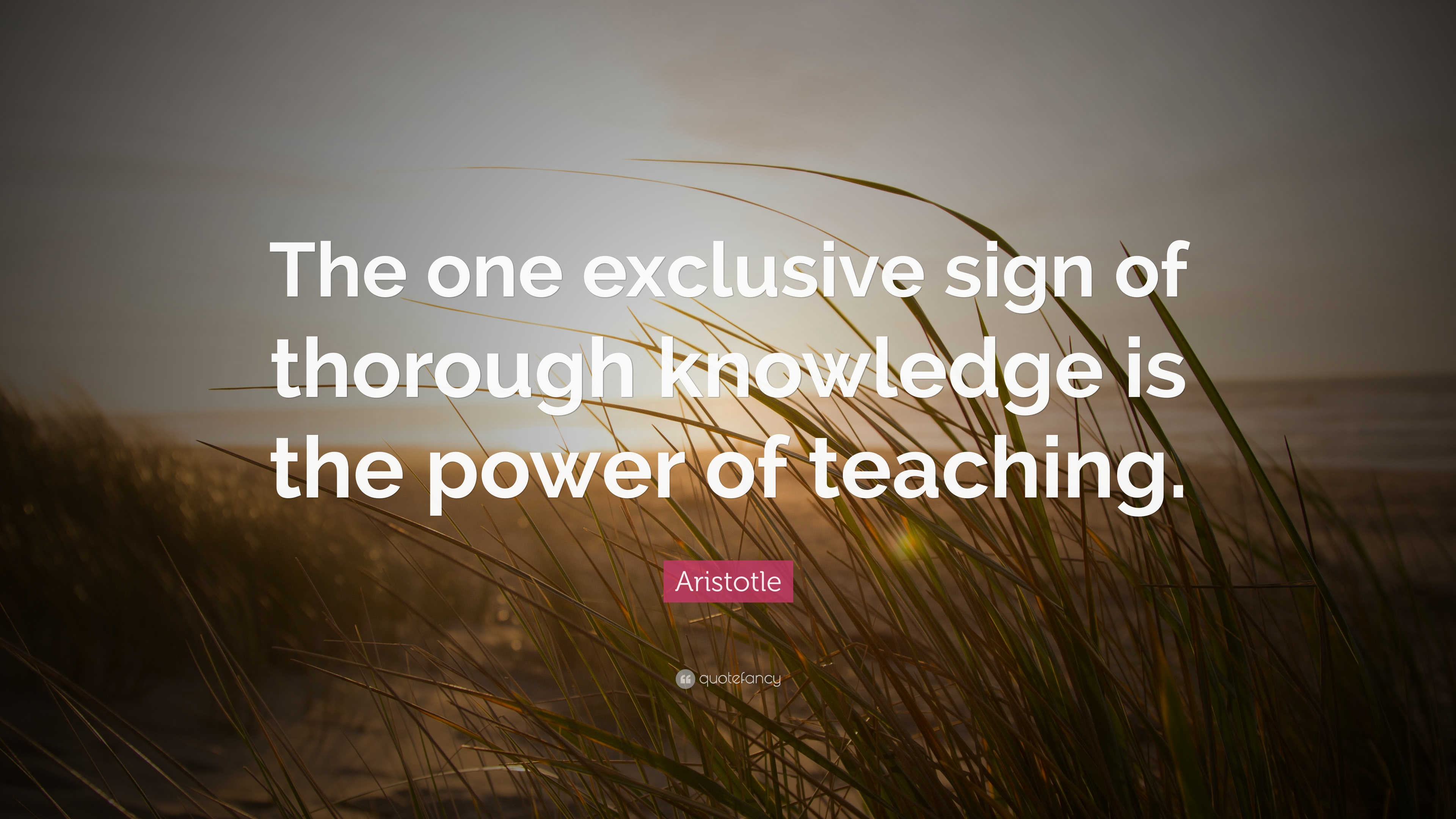 """Those That Know Do Those That Understand Teach: Aristotle Quote: """"The One Exclusive Sign Of Thorough"""