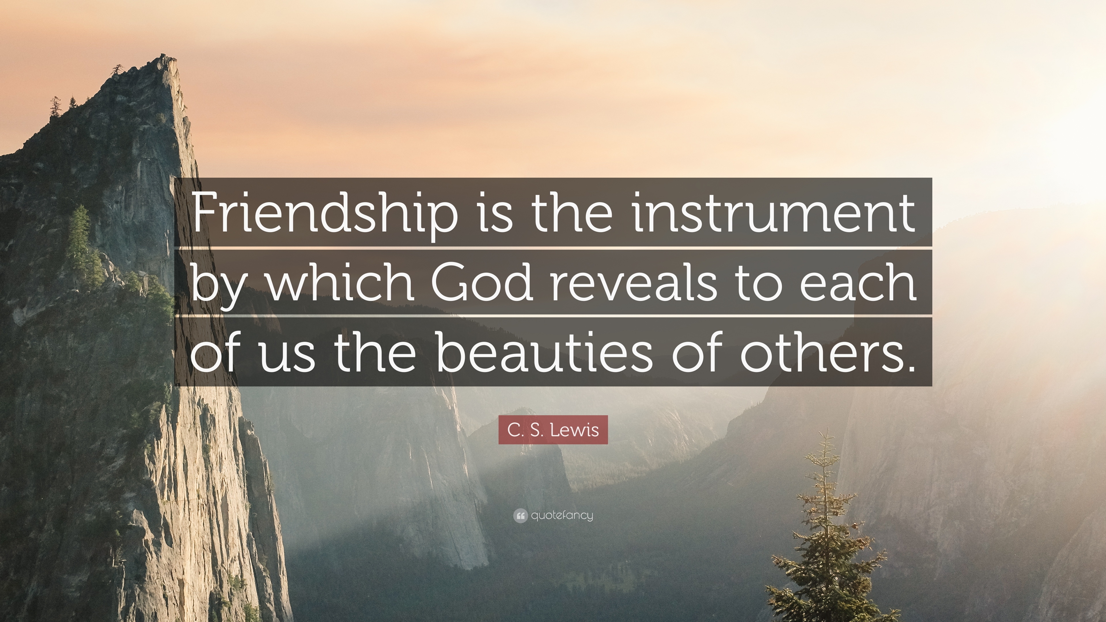 "Cs Lewis Quote About Friendship Cslewis Quote ""Friendship Is The Instrumentwhich God"