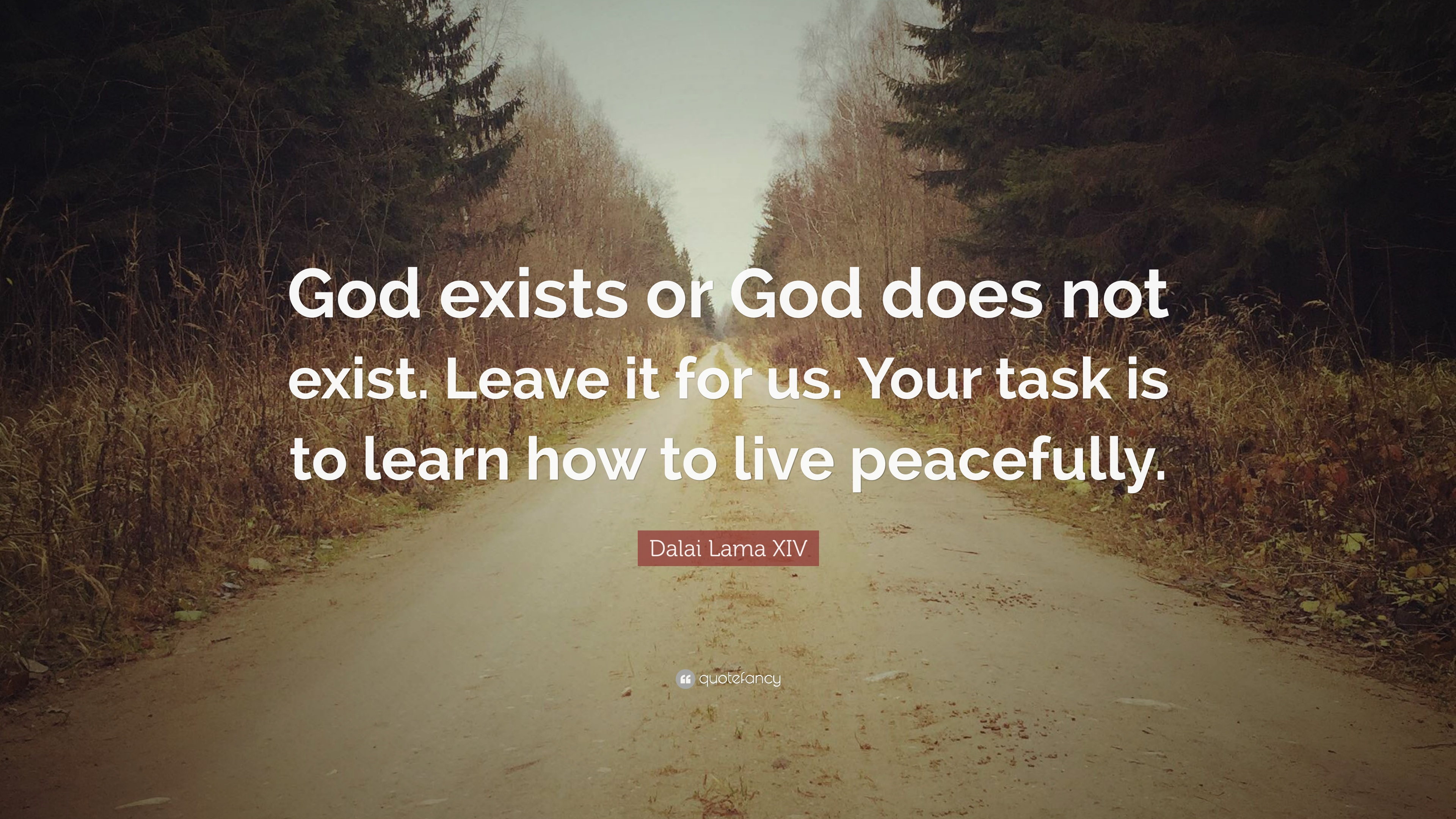 "Dalai Lama XIV Quote: ""God exists or God does not exist  Leave it"