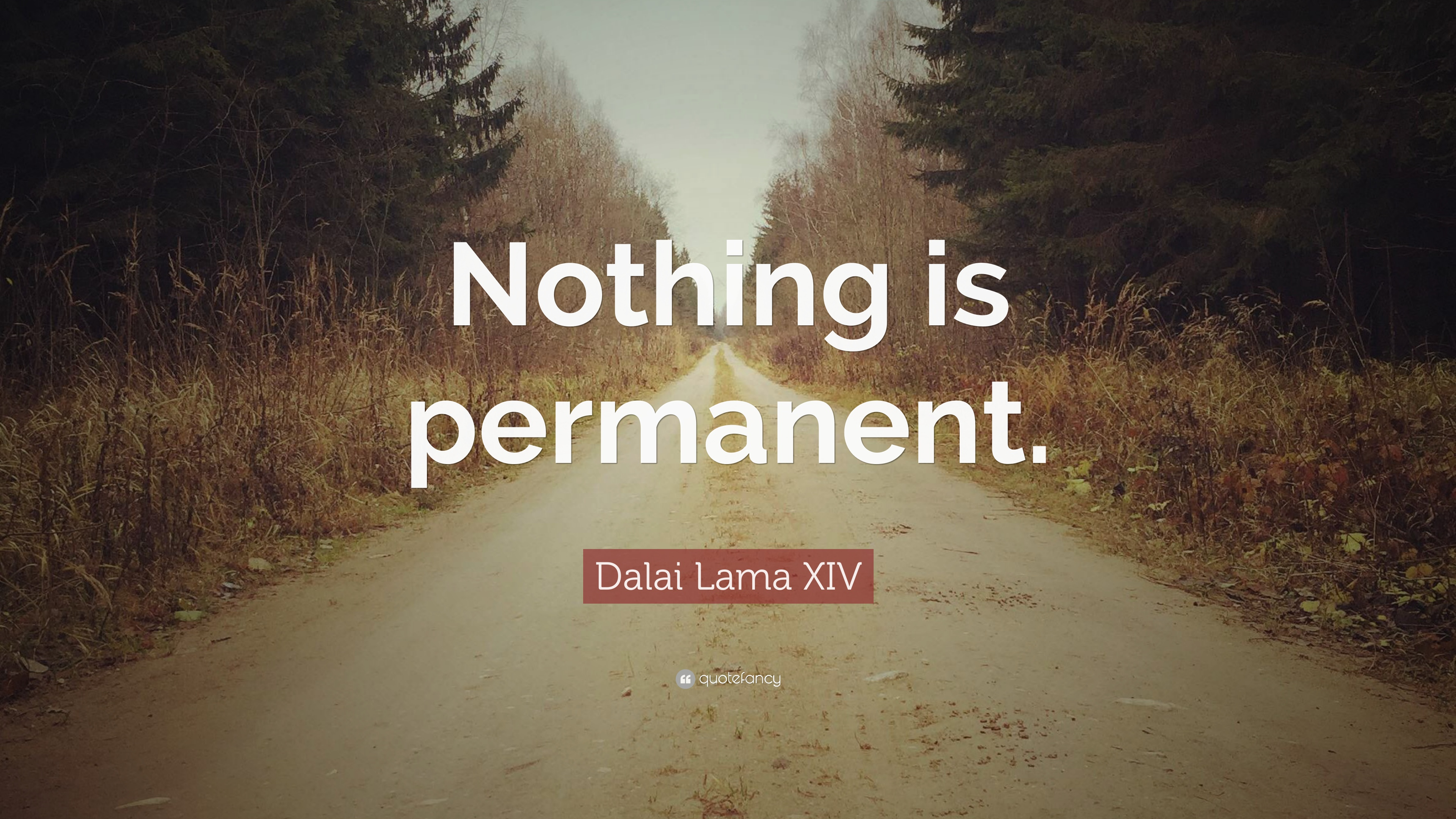 Image result for nothing is permanent