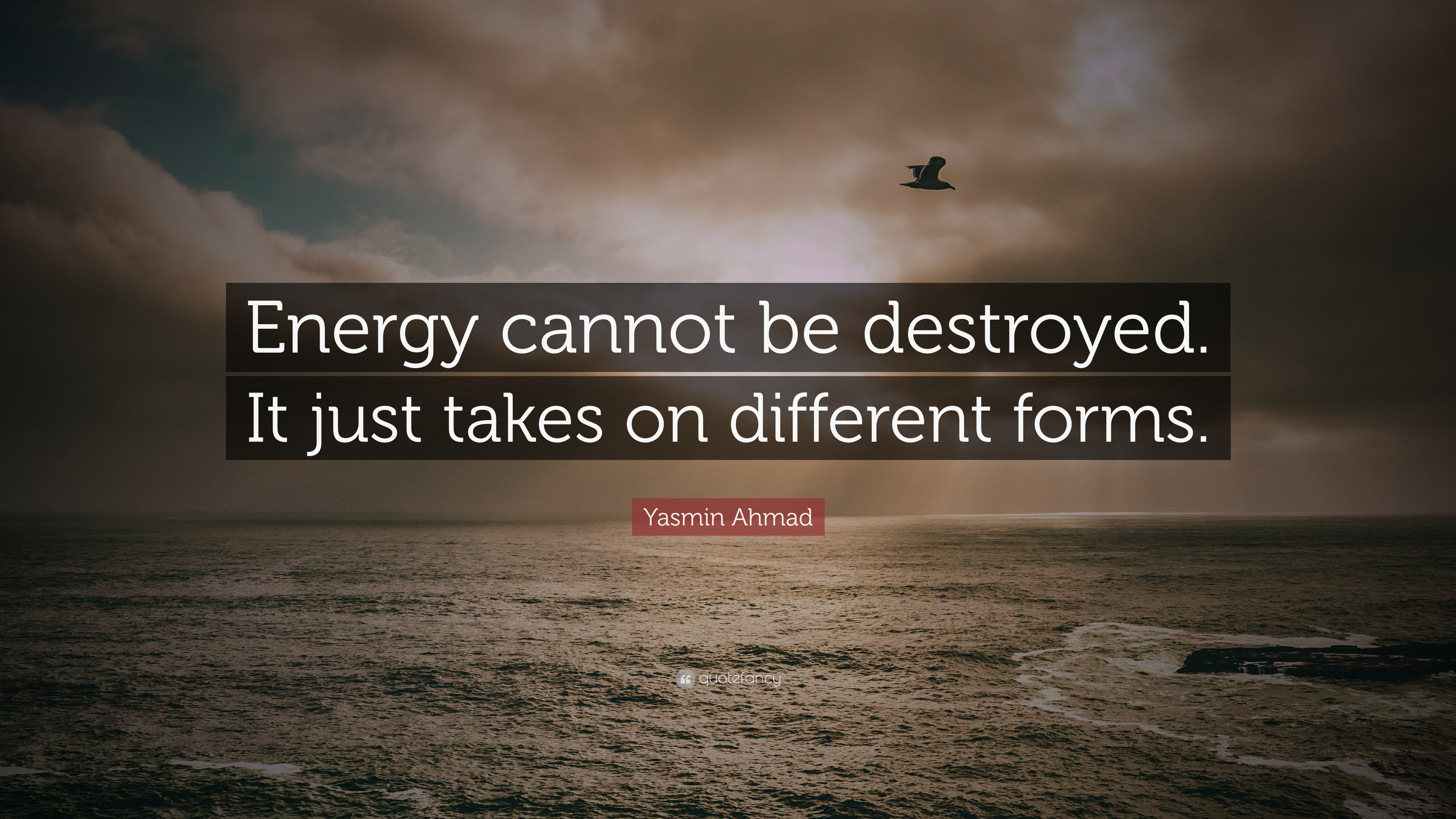 Yasmin Ahmad Quote Energy Cannot Be Destroyed It Just Takes On