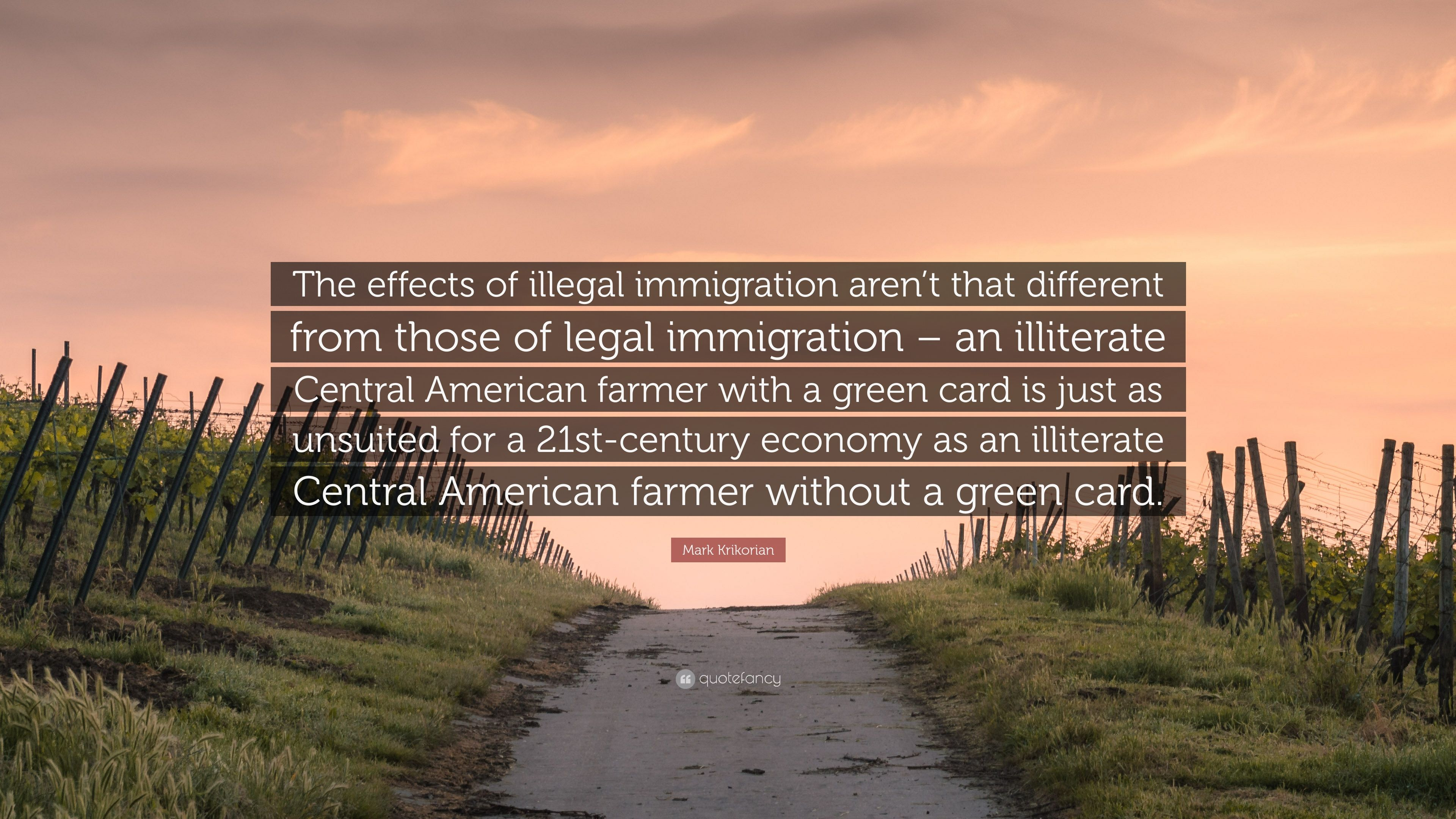 effects of illegal immigration
