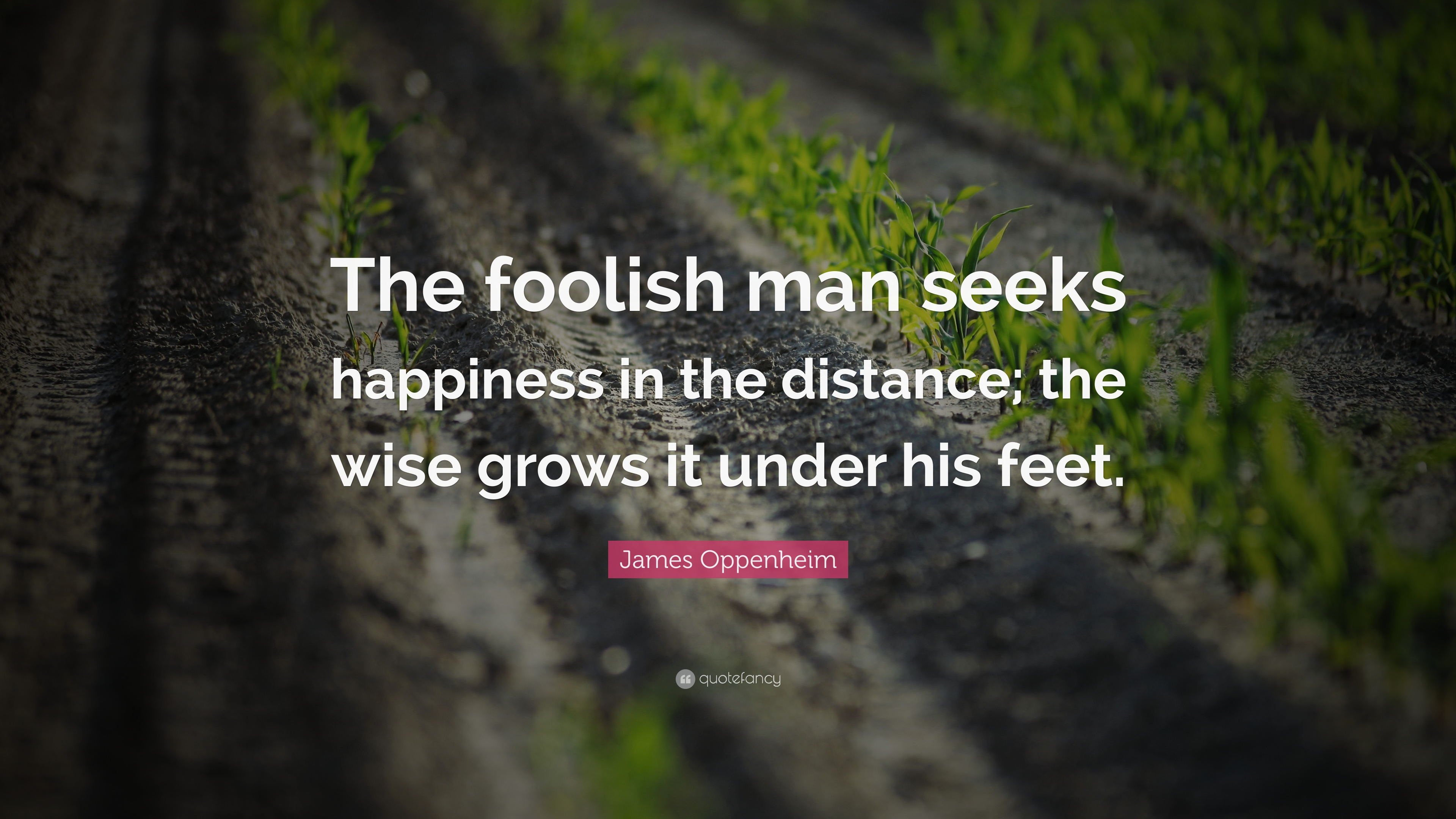 Foolish man quotes