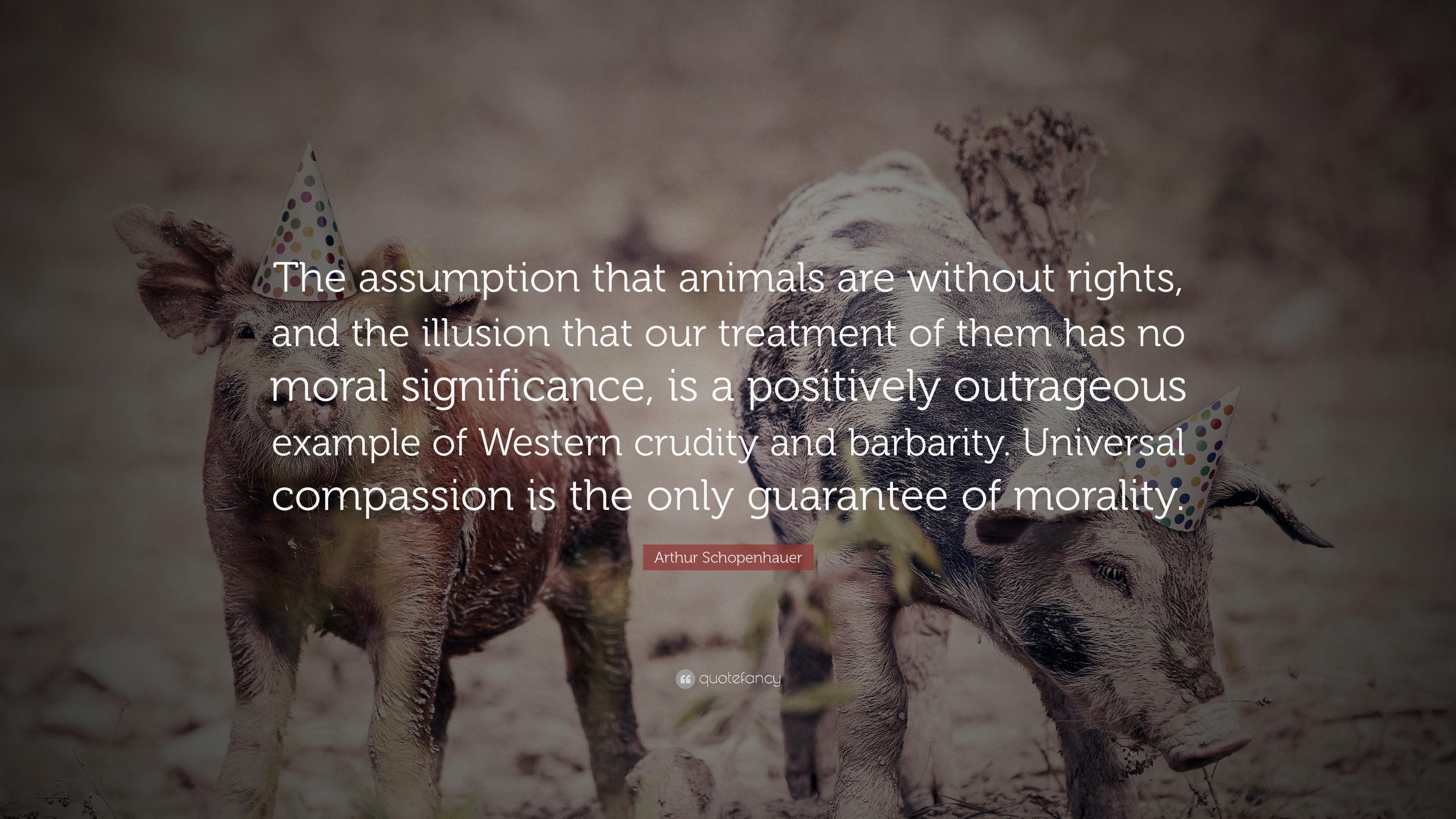 Animals and Ethics