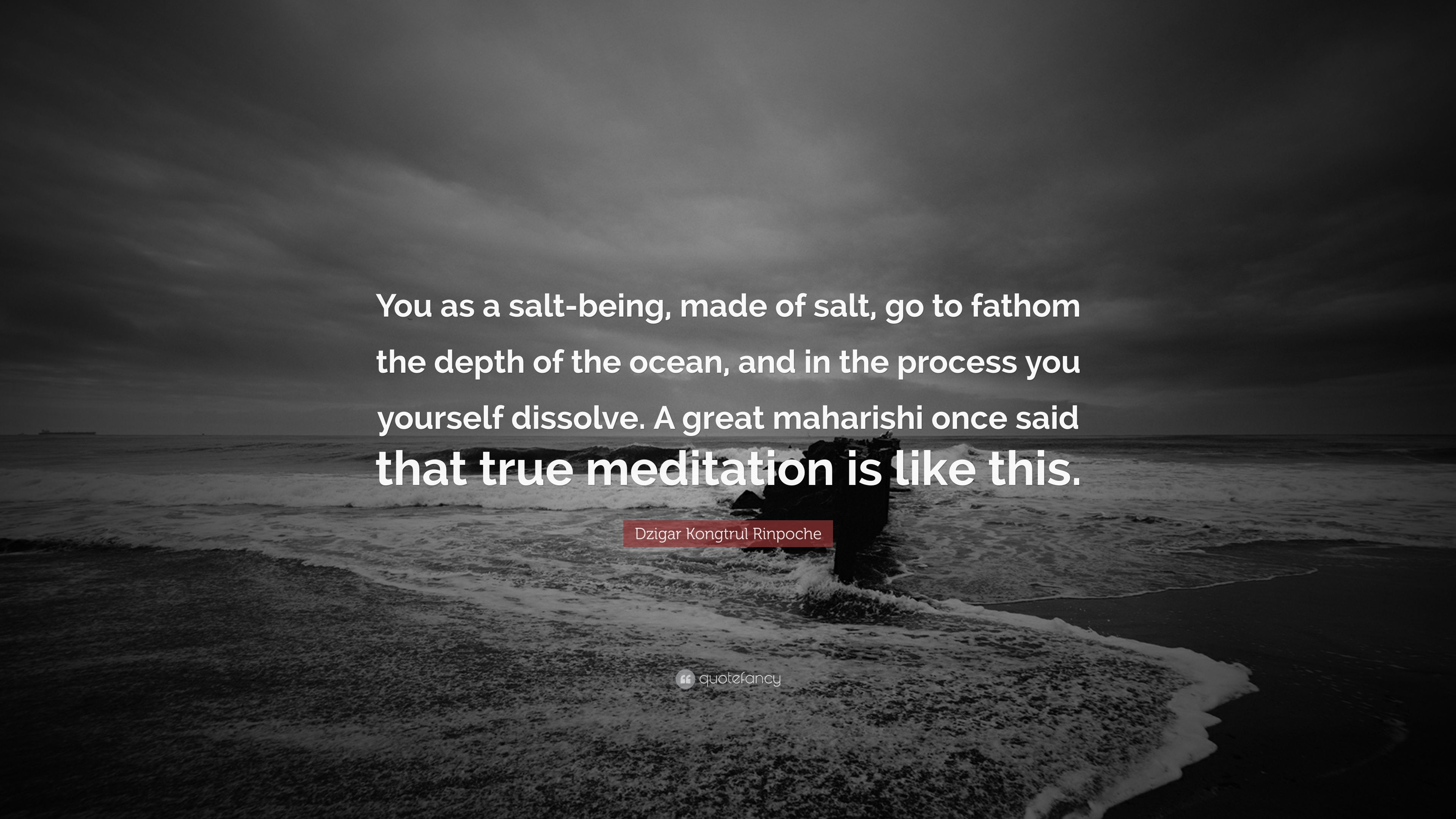 Dzigar Kongtrul Rinpoche Quote You As A Salt Being Made Of Salt