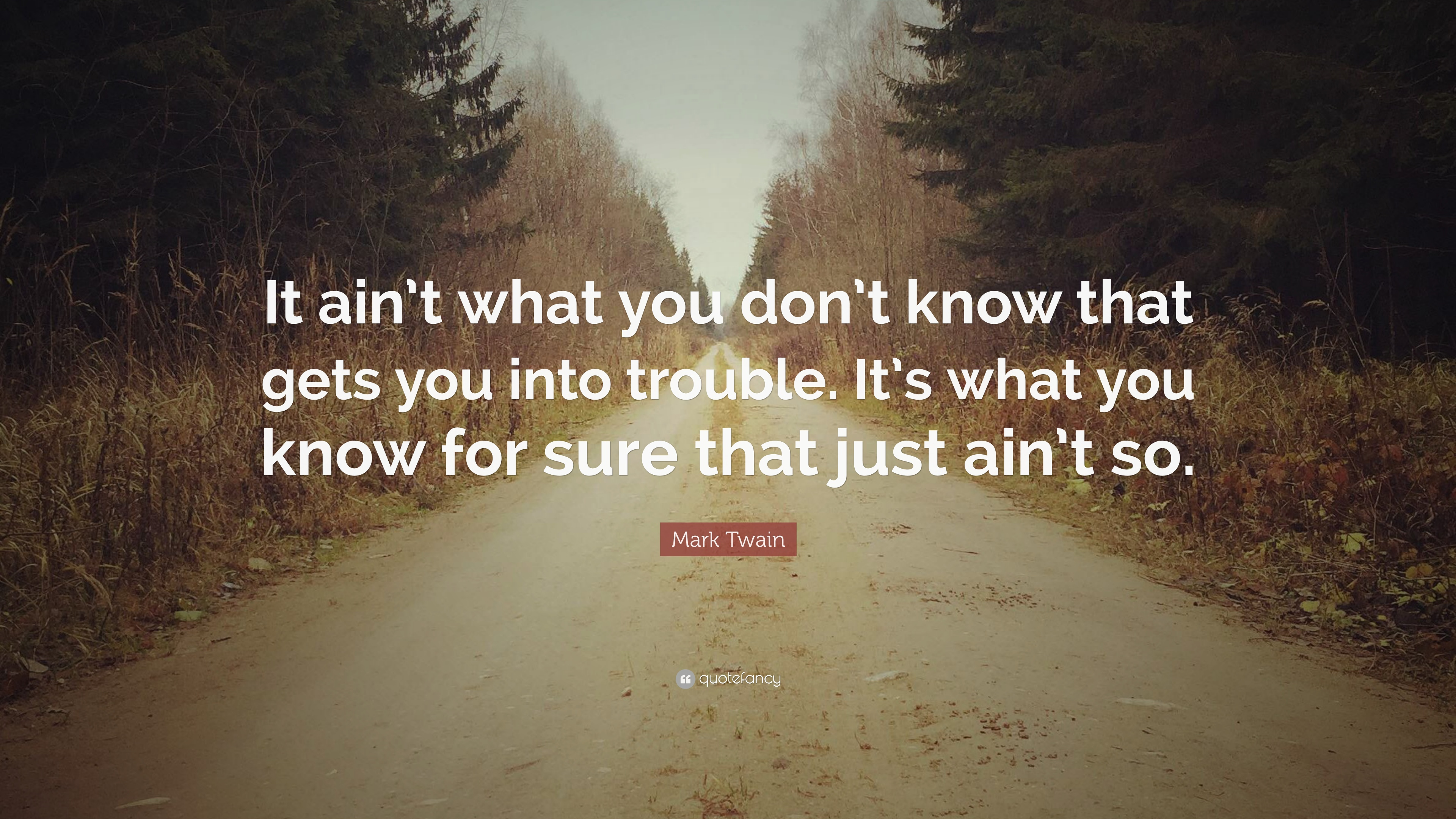 """Quote It Mark Twain Quote """"It Ain't What You Don't Know That Gets You Into"""