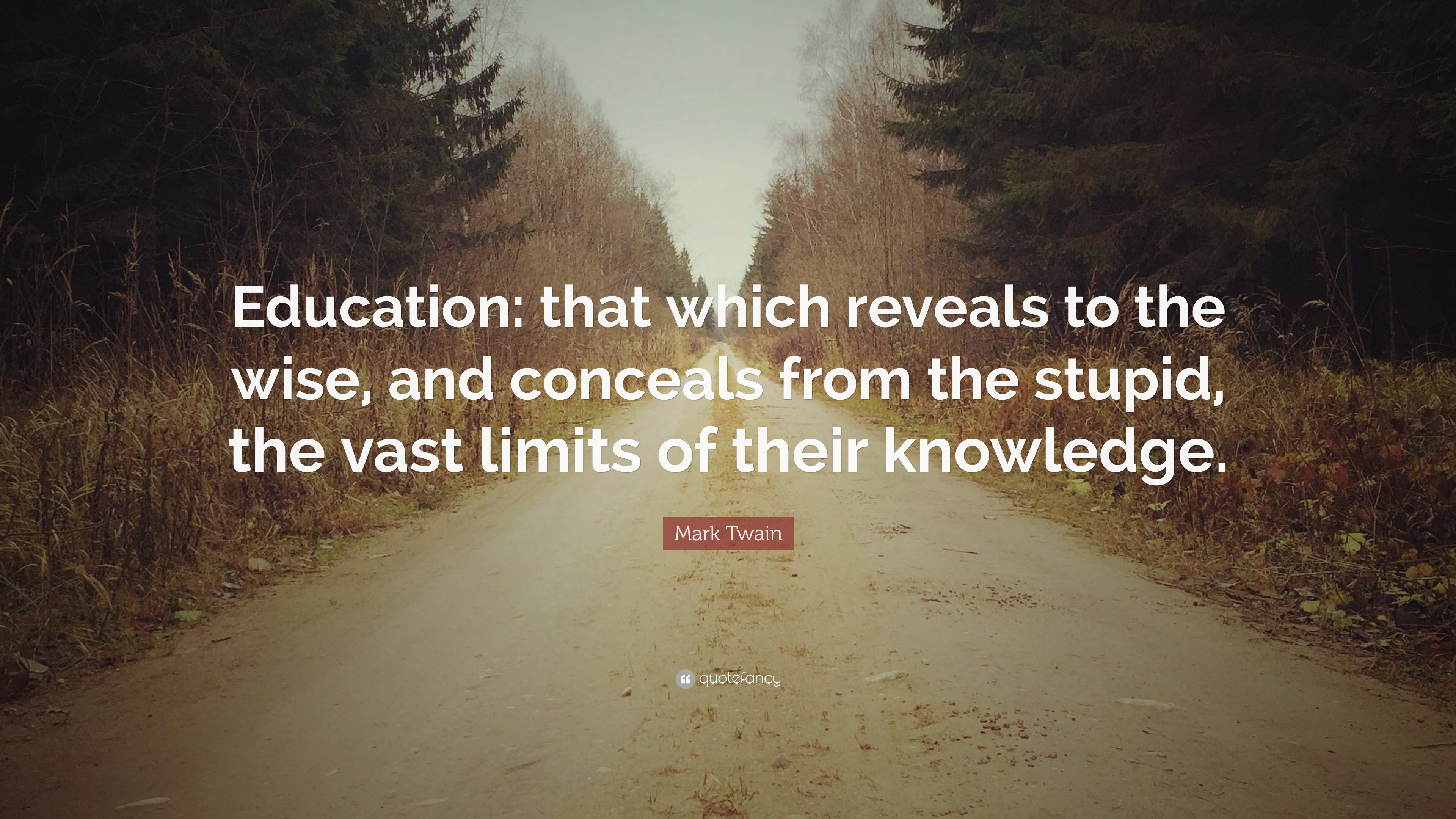 Mark Twain Quote Education That Which Reveals To The Wise And