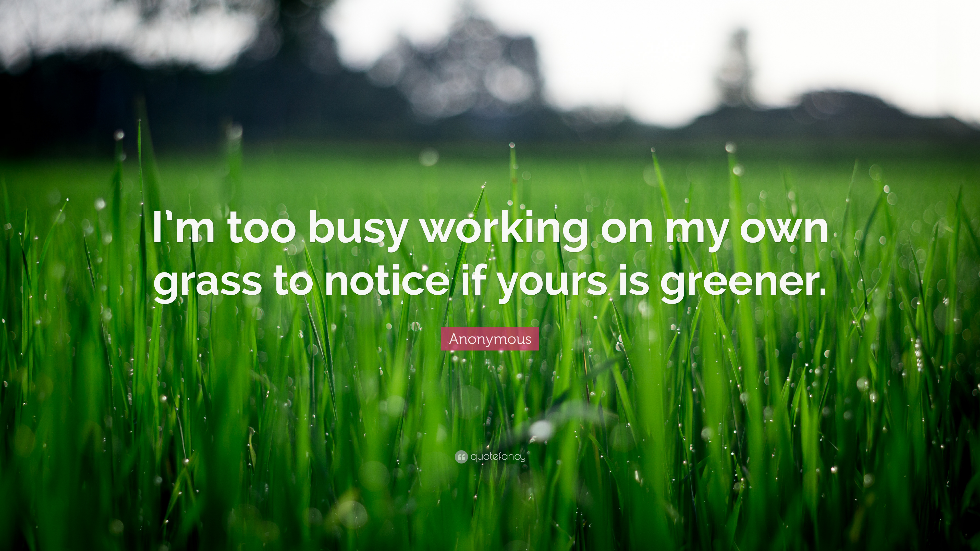 Anonymous Quote Im Too Busy Working On My Own Grass To Notice If